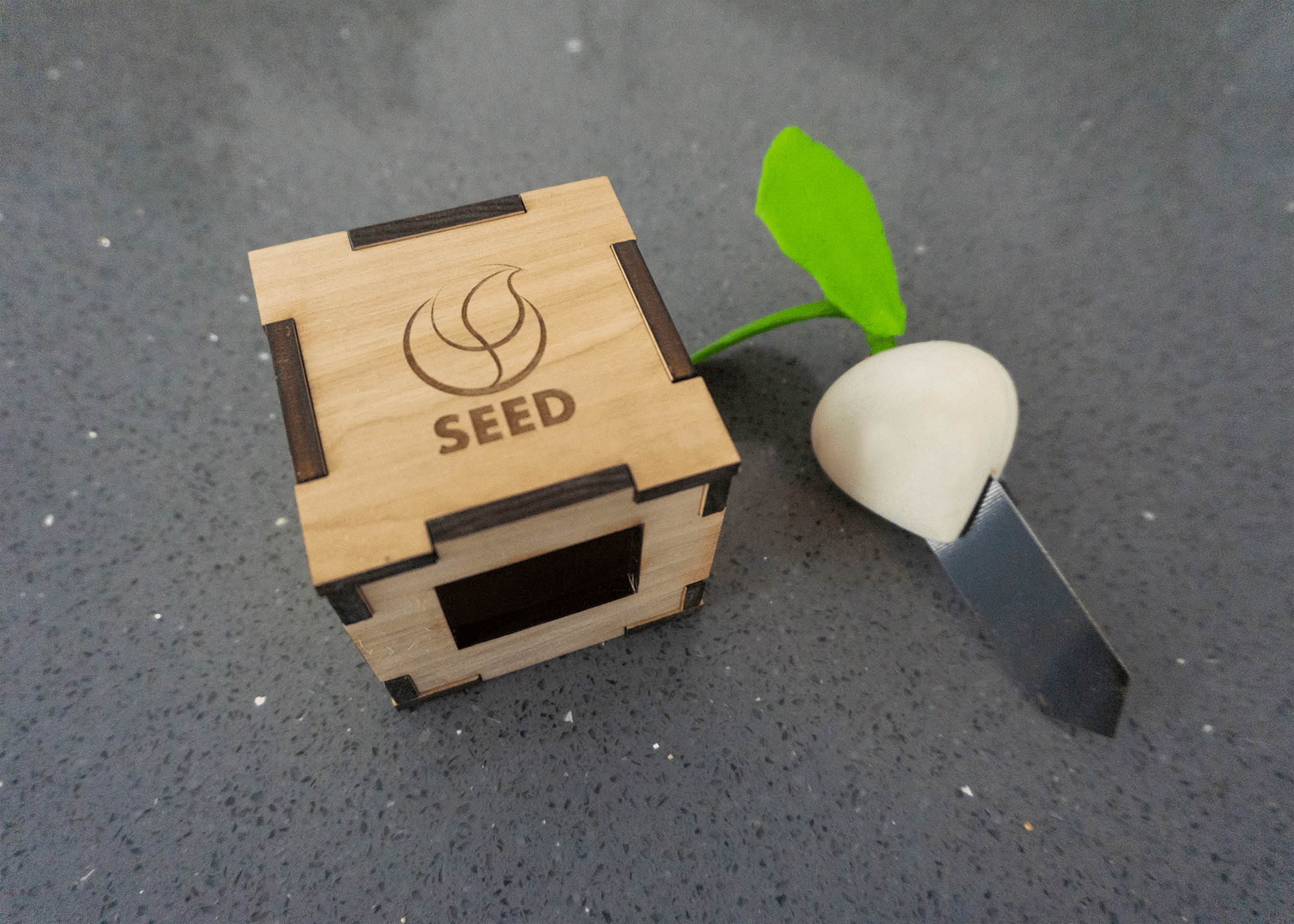 SEED-Items2-min.png