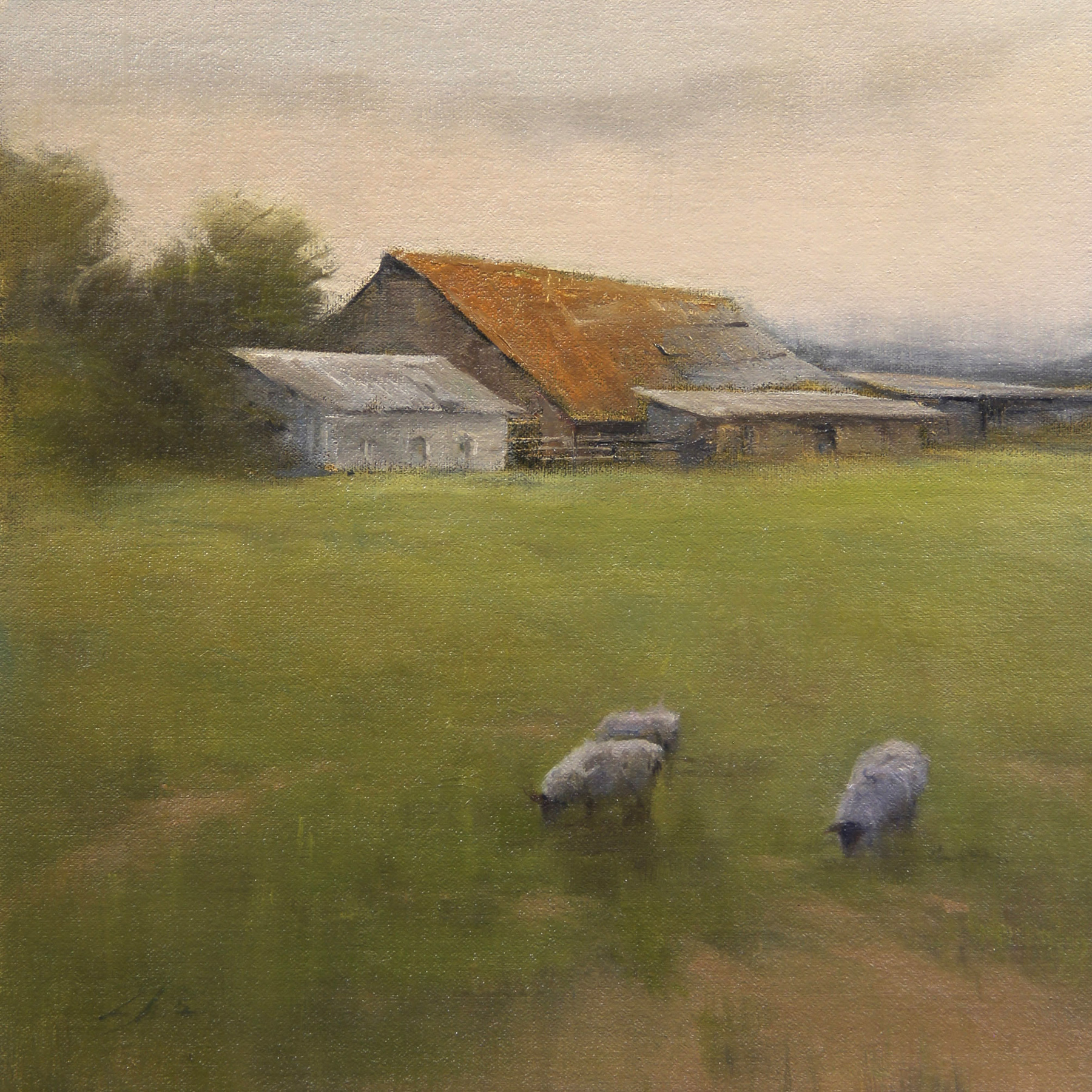 Tranquil Pasture