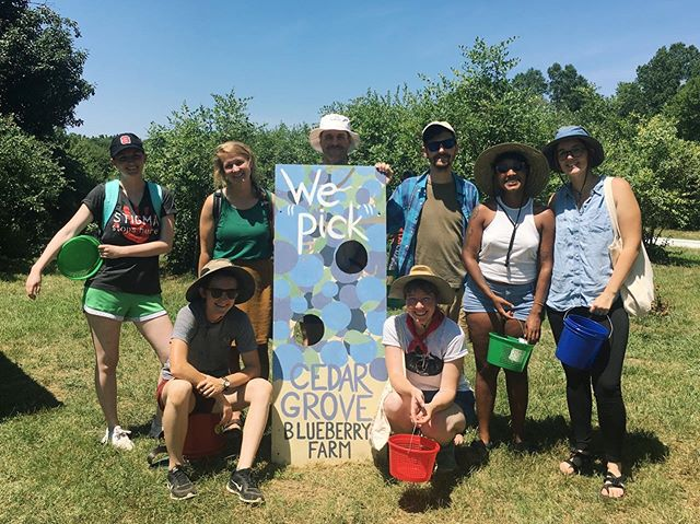 What a good crew out @cedargroveblueberry farm this hot July afternoon! As a group we picked 22 lbs. 💪🏻 Excited for all the baked goods and smoothies and snackin'. . #cedargroveblueberryfarm #upickblueberries #gottobeNC #NCfarm #sunnysunday #july