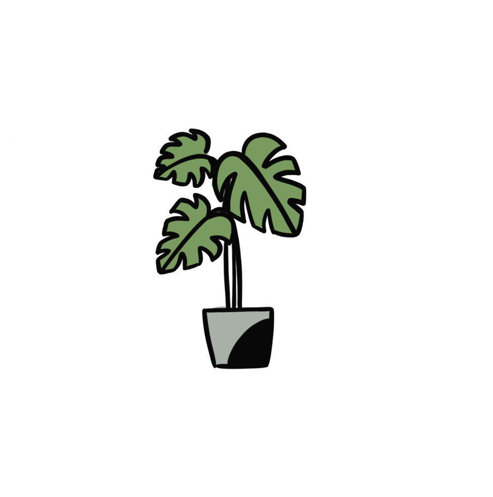 monstera color.png