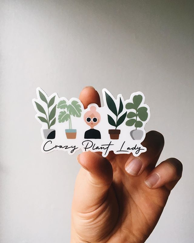 It's here!! Crazy plant lady sticker!  Perfect for water bottles, phones, notebooks, laptops and more.  This vinyl decal is waterproof and withstands all the elements, even tears.  Buy it on Etsy!