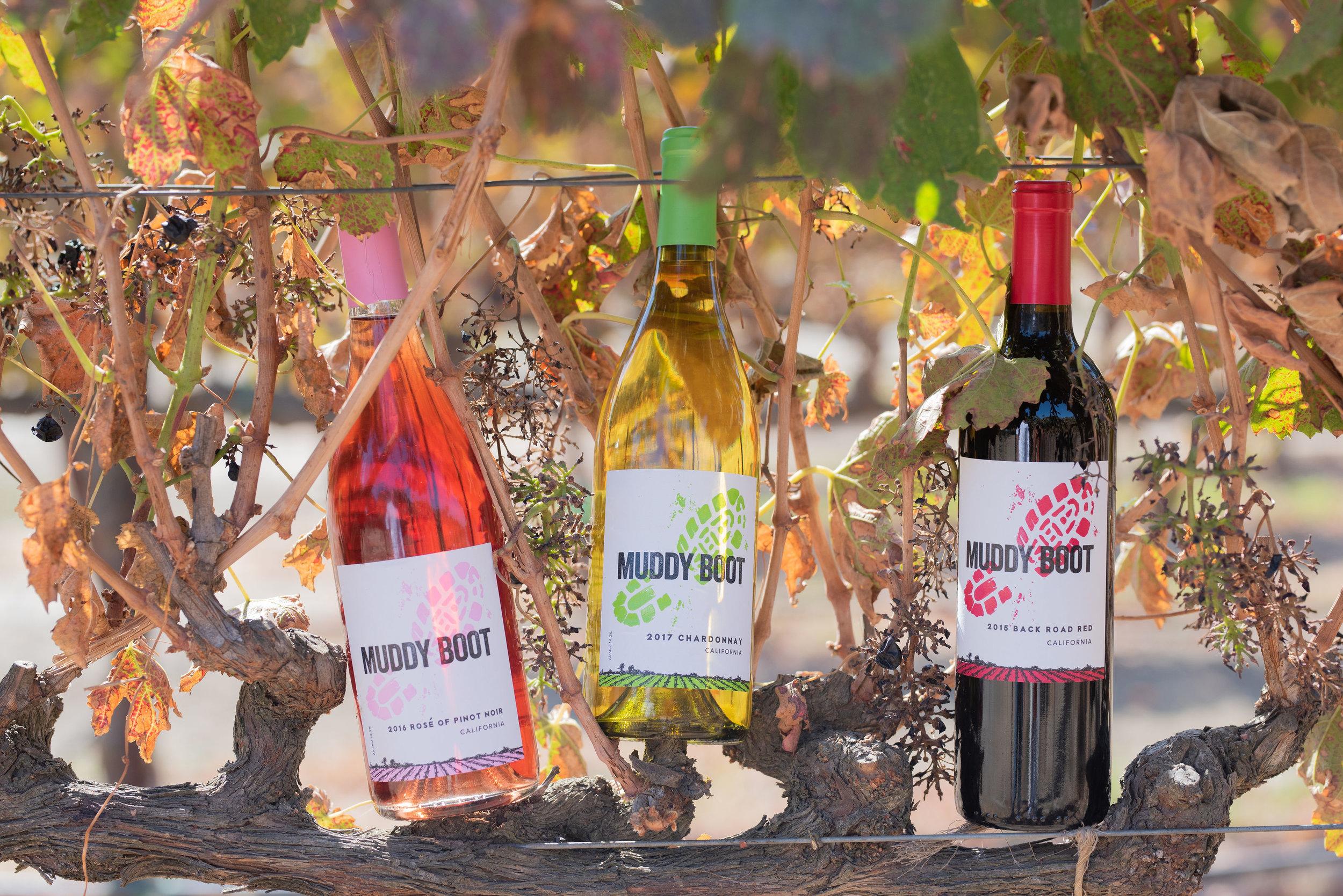 National Wine Label in  Clarksburg, CA