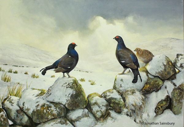 Black grouse on wall, oil painting, 'My Ark for Nature', Inverness Cathedral