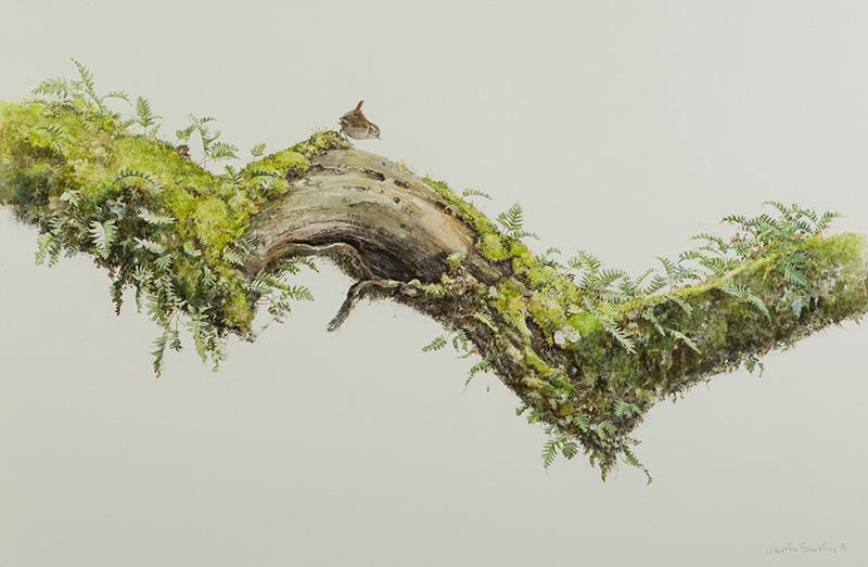 'Birds in Art', Leigh Yawkey Woodson Art Museum, Jonathan Sainsbury 'Wren's Larder' - Oak branch, wren, mosses