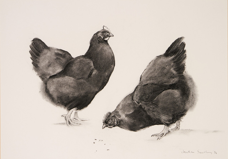 'Gossip' - Black Hens, charcoal, Jonathan Sainsbury, late Dowager Duchess of Devonshire, Sotheby's