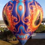 Fractal Hot air Balloon