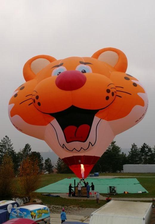 Hugo Cat Balloon.jpg