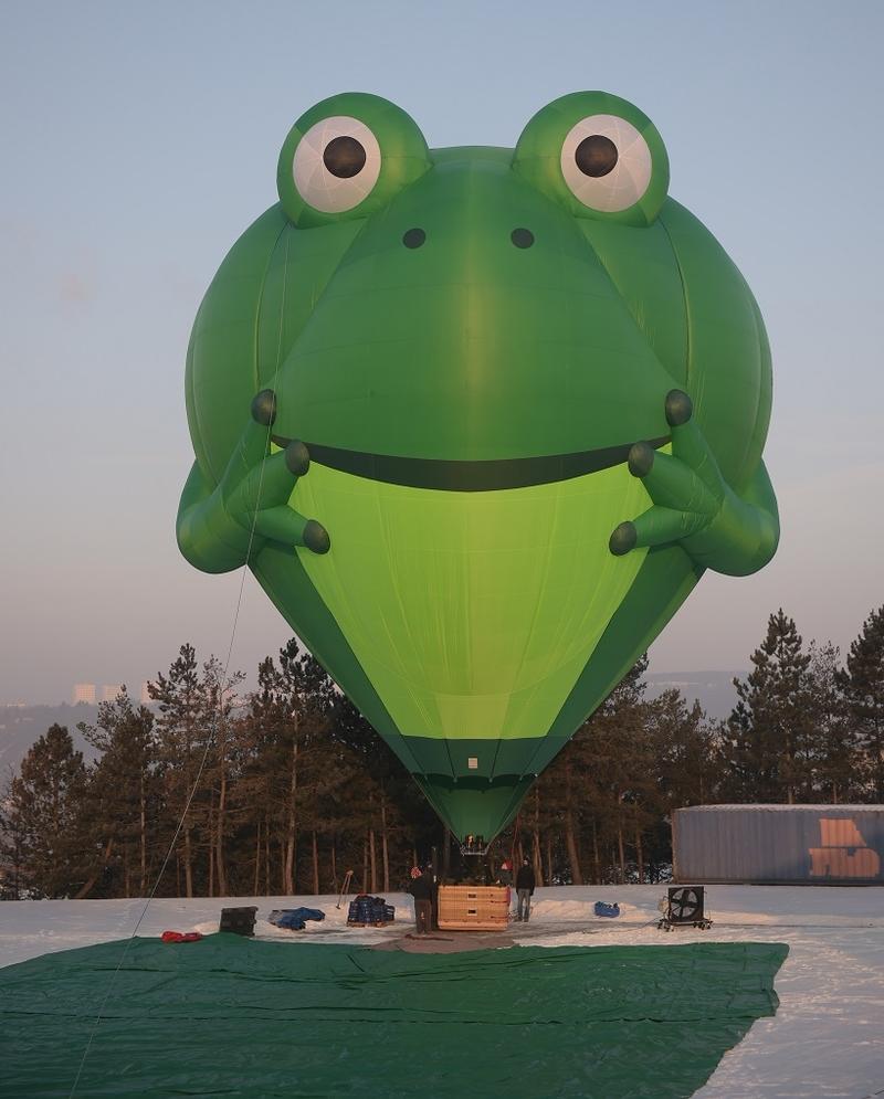 Frog Balloon.jpg