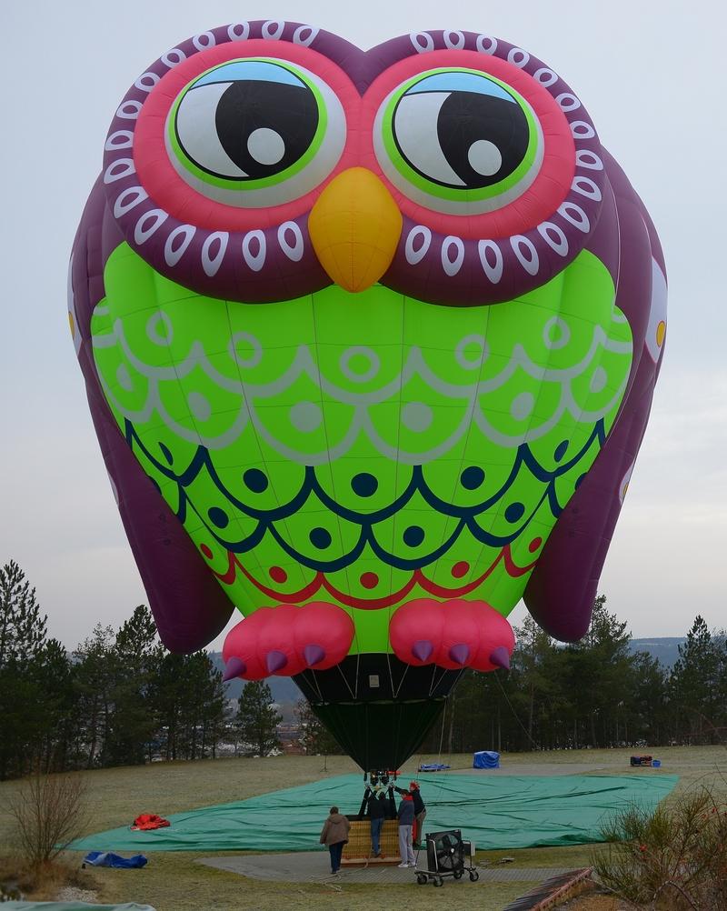 Owl Balloon.jpg