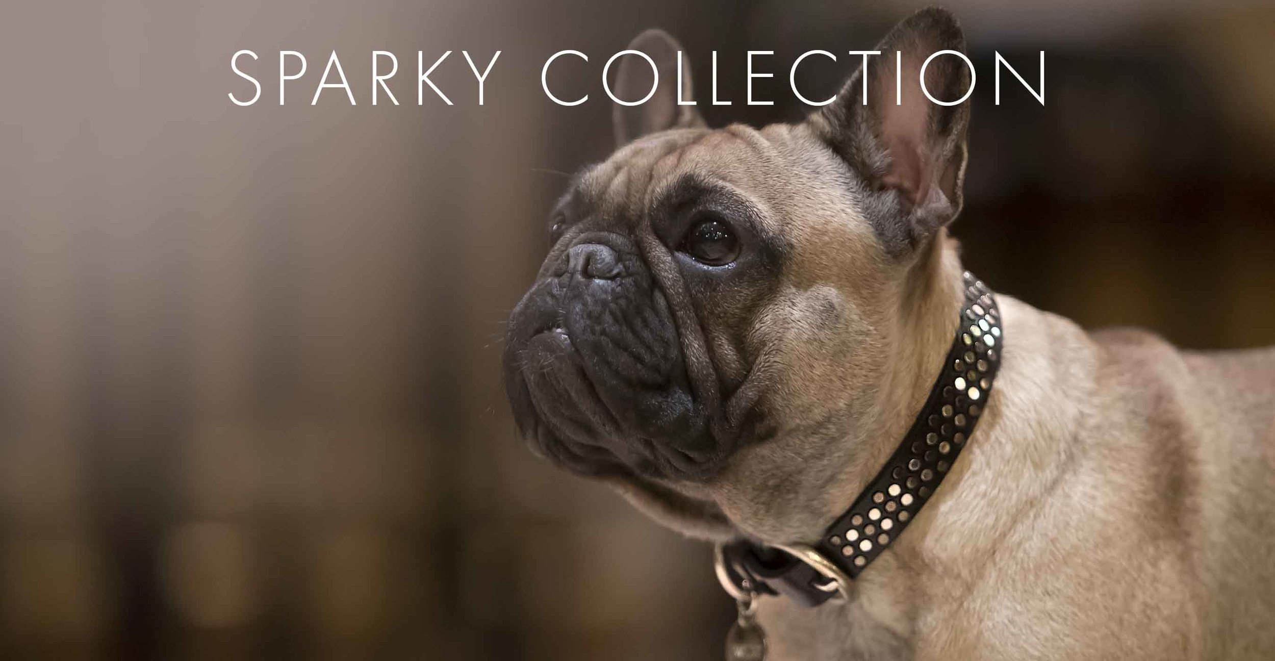 https://www.bwildecollection.com/collection/sparky-collection