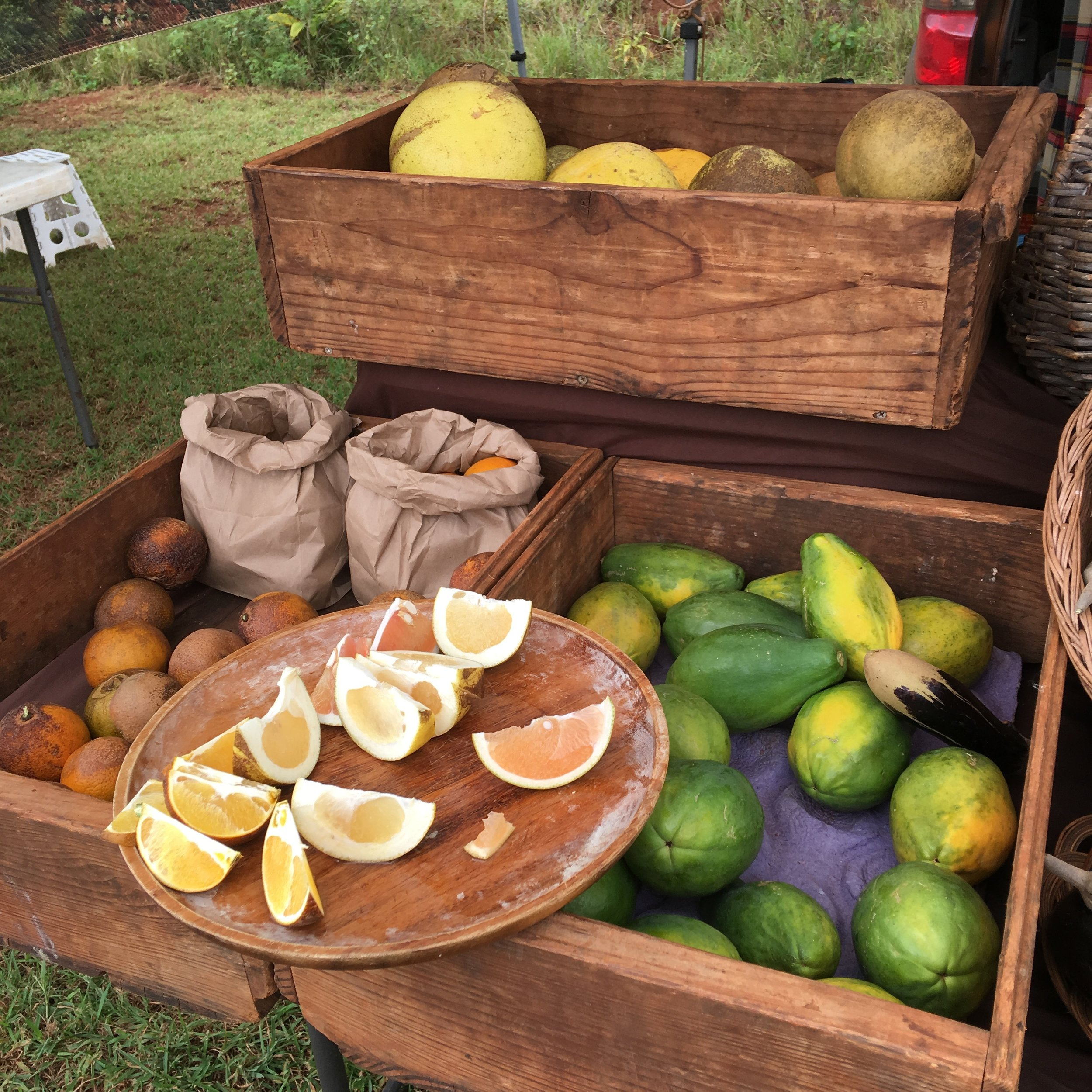 Two Markets A Week - Open from 10am-2pm on Sundays, with locally farmed produce, meats, fish, and other foods; as well as crafts and gifts made by Kauai artisans, and live Tahitian drumming performances throughout the day. Free Parking and Keiki FriendlyOur market has a rotating collection of farmers, food vendors, crafters, makers, and artists every week in addition to our regular vendors. Every market offers a whole new experience and wondrous finds. Come visit us every Sunday to shop local, support Kauai's farmers and artisans, and to see what's new at the market.