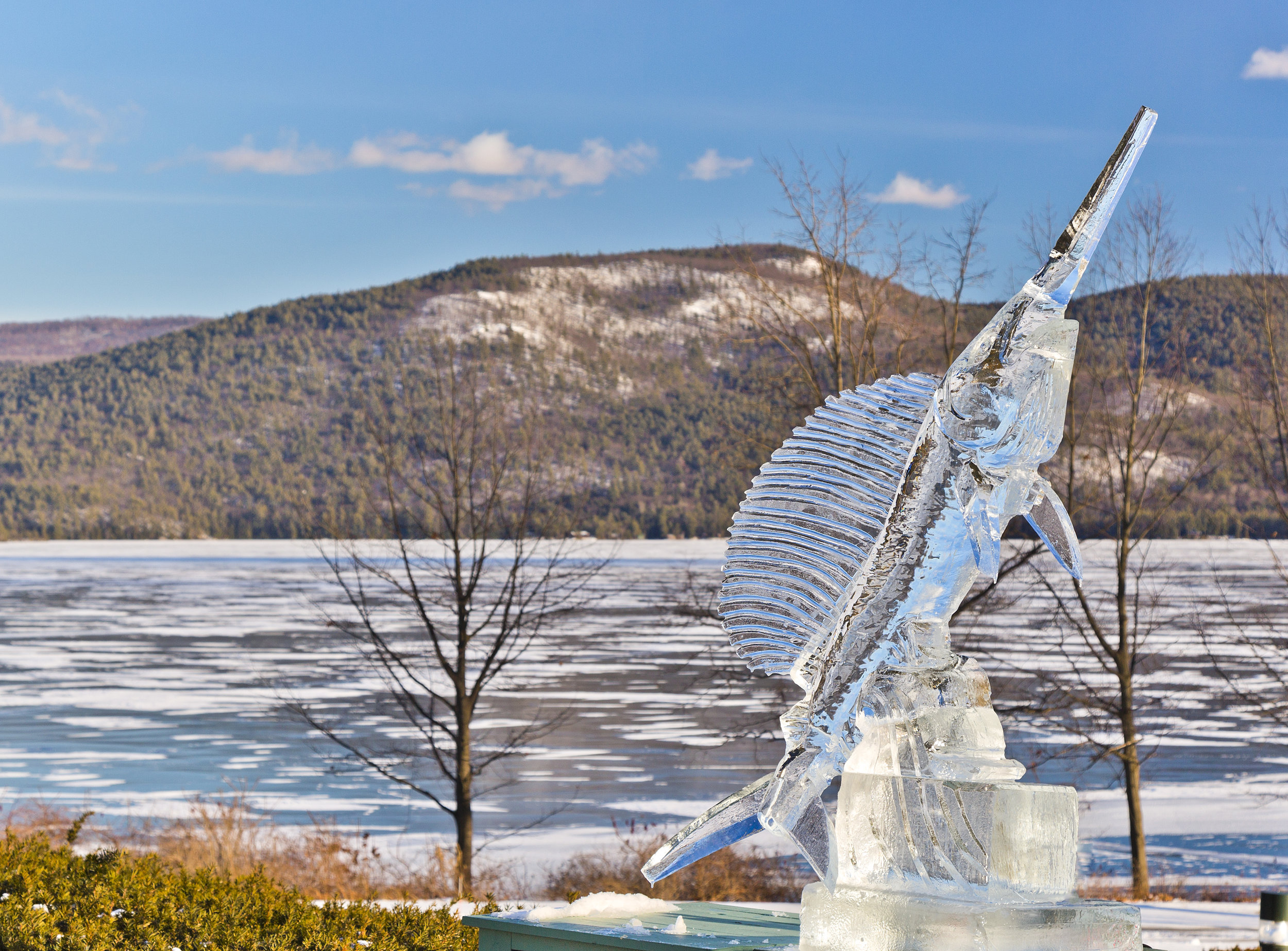 Sagamore-Ice-Bar-15.jpg
