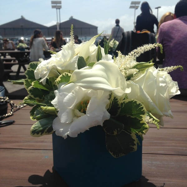 Our arrangements shining bright in the beautiful summer light!