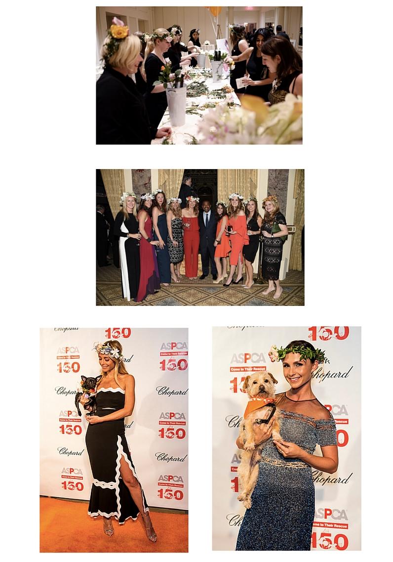 B Charitable: 2016 ASPCA Bergh Ball