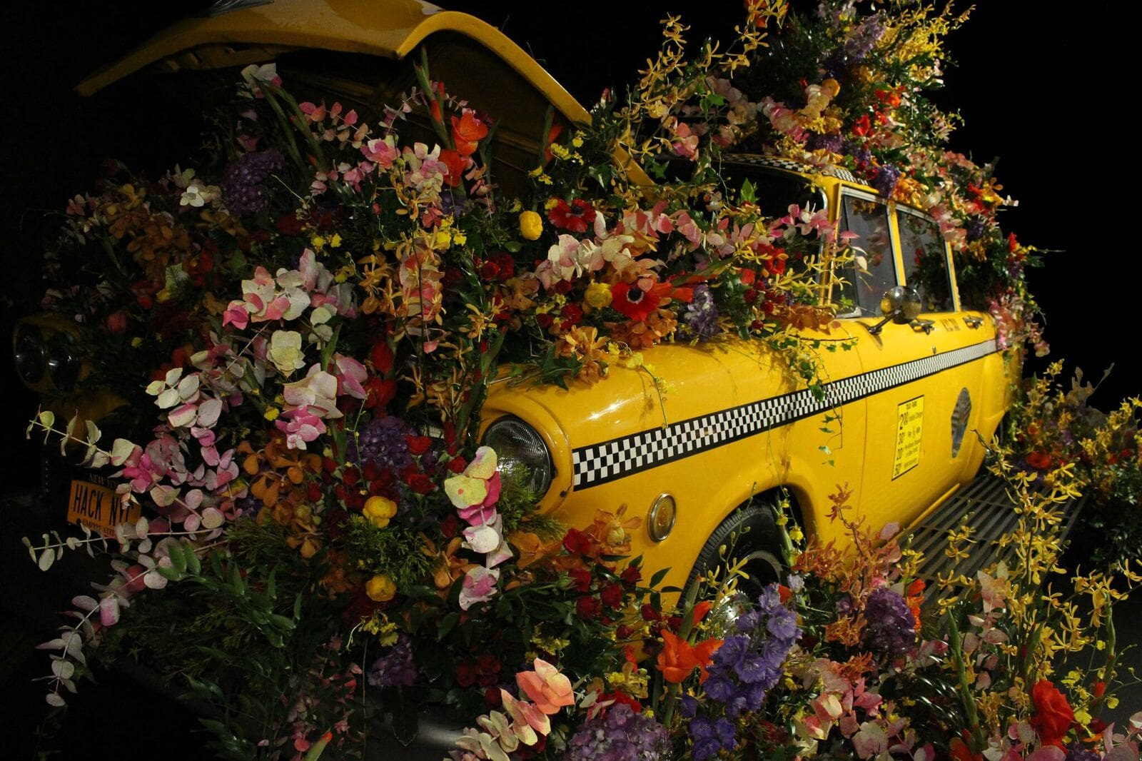 Taxi Flower Bomb- B Floral