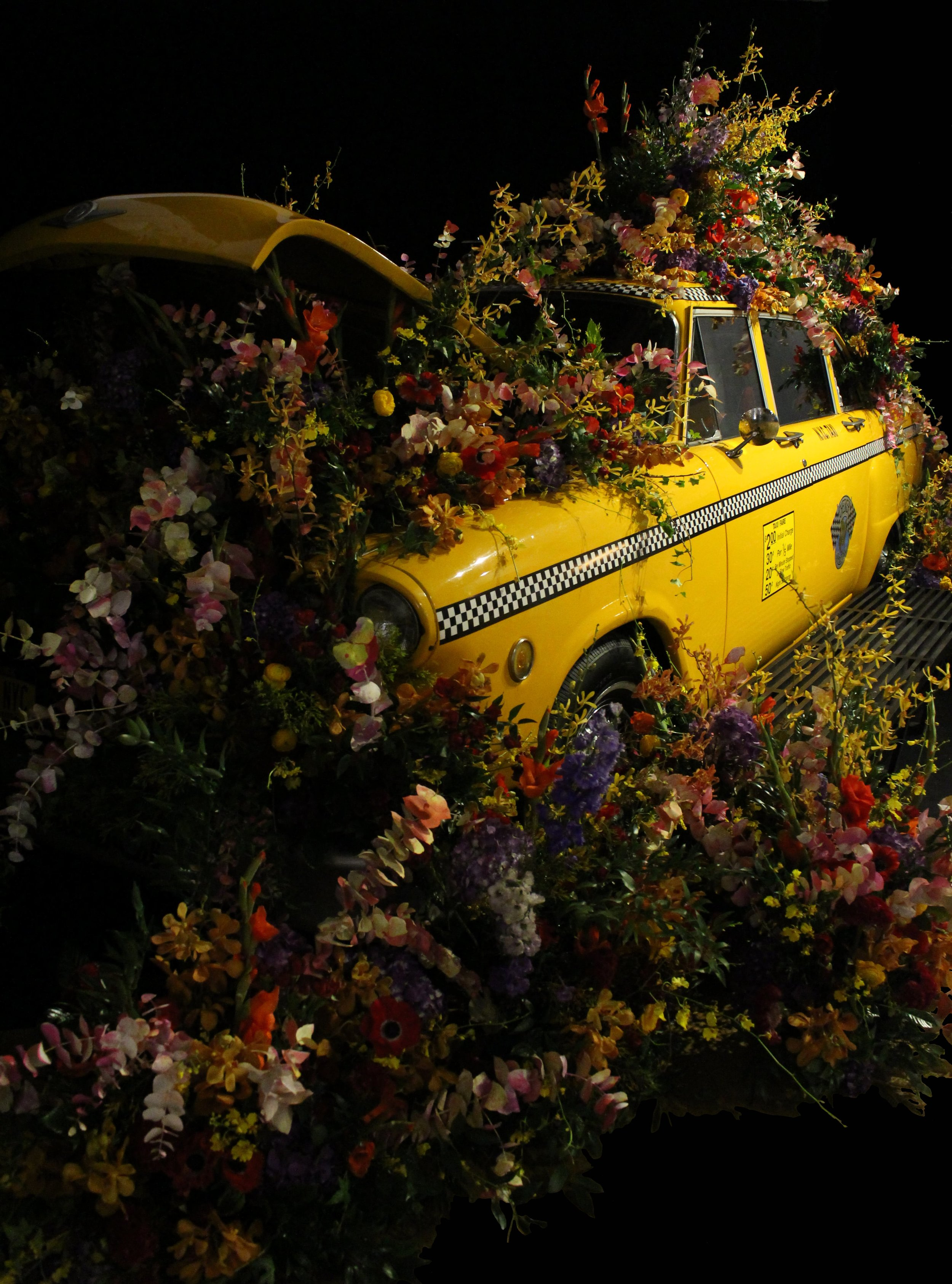 Front of Flower Bomb Cab- B Floral