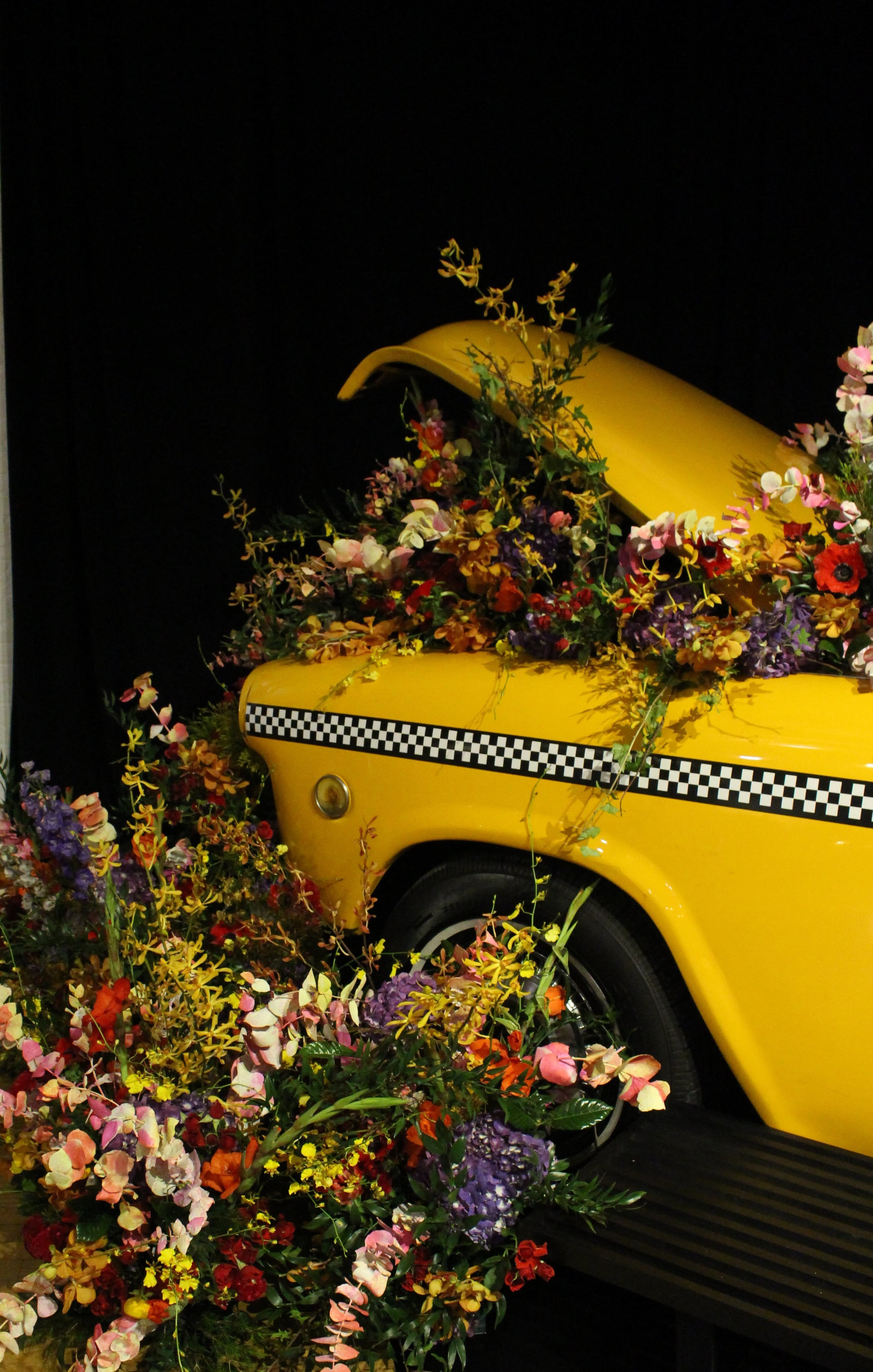 Flower Bomb Cab Hood- B Floral