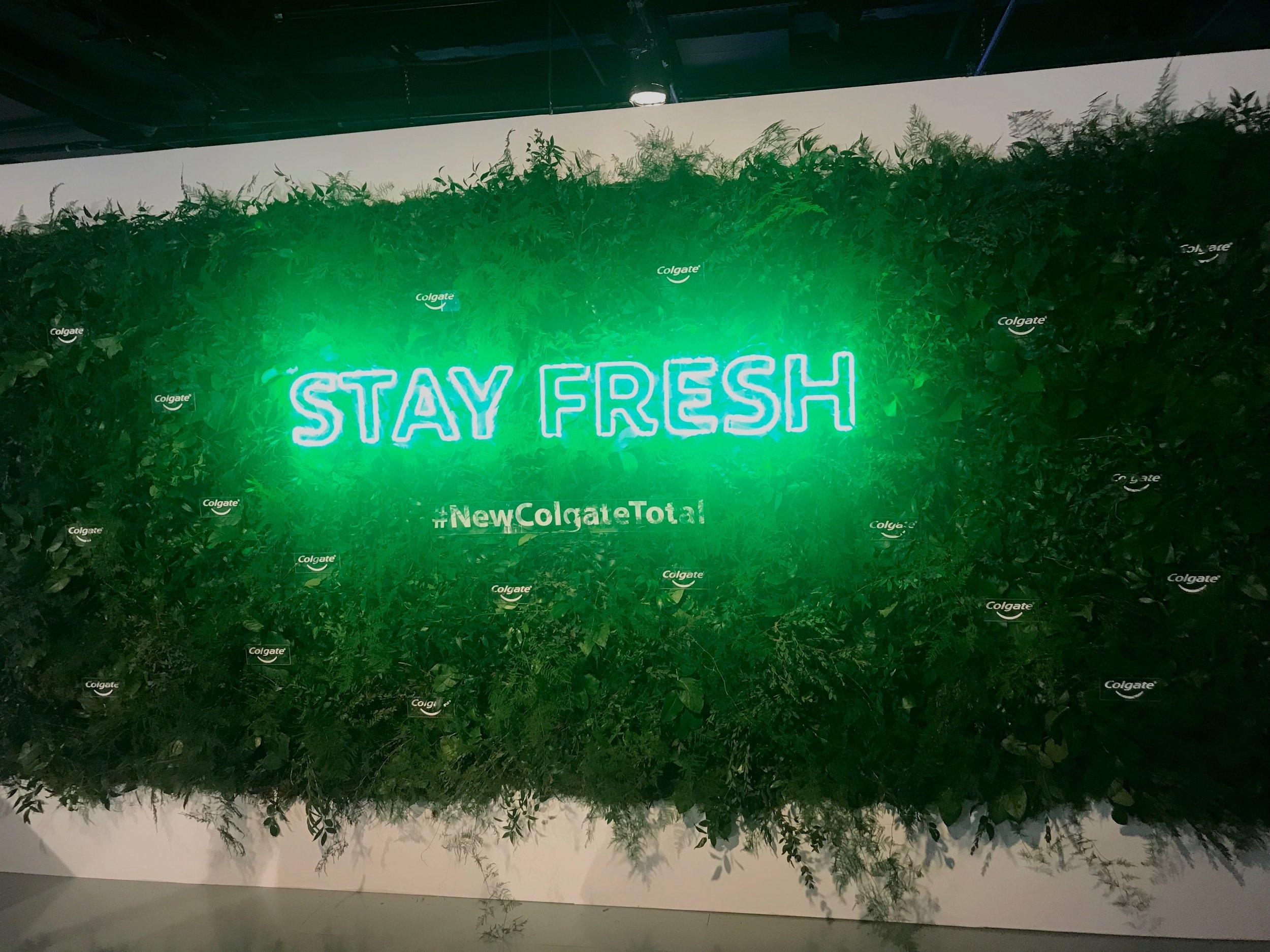 BMF Media New Colgate Total Greenery Wall- B Floral