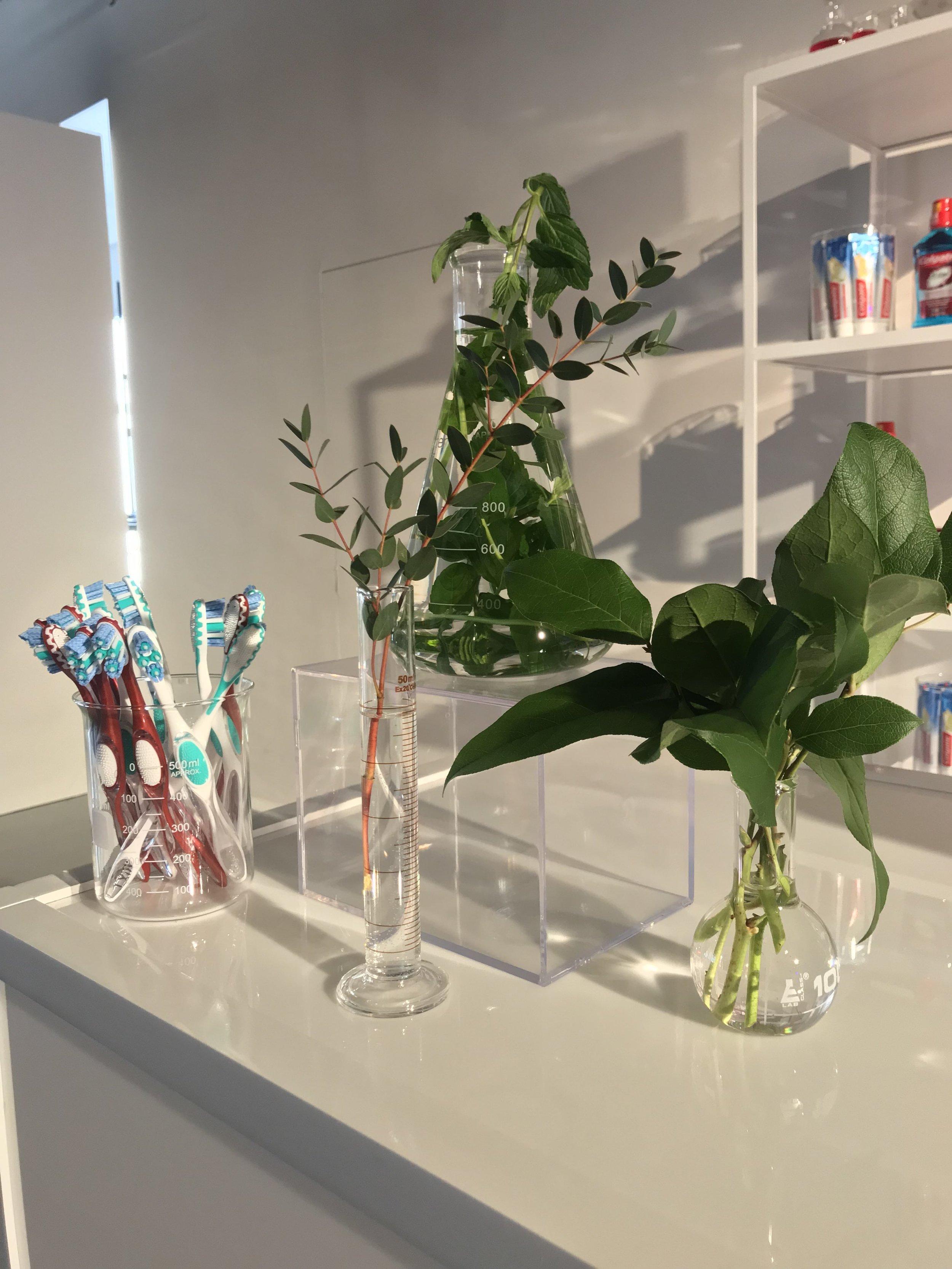 Colgate Product Displays- B Floral