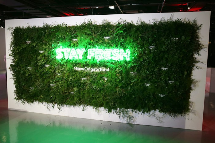 BMF Media Colgate Greenery Wall- B Floral