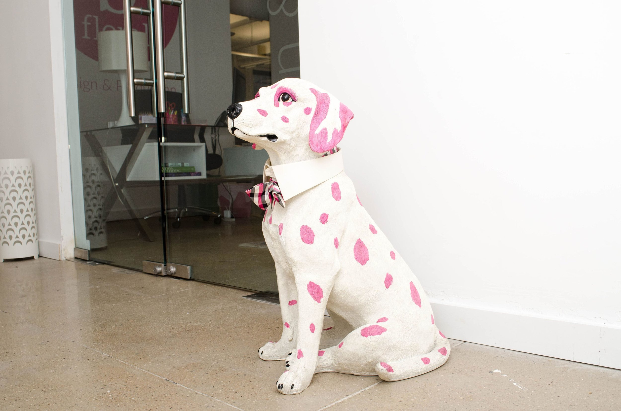 In a predominantly female office, Pokey takes on the role of (wo)man's best friend. He's the official company mascot, the first friendly face you'll see at our office, and he's been with us through our whole  B Floral  journey.
