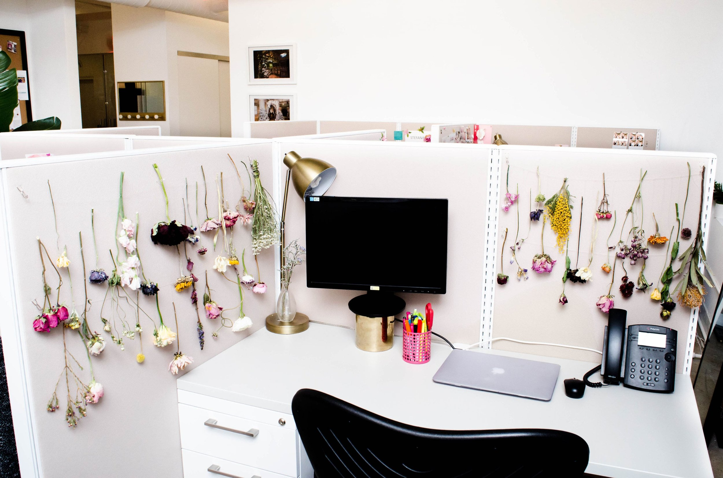New Beginnings: B Floral Changes Offices