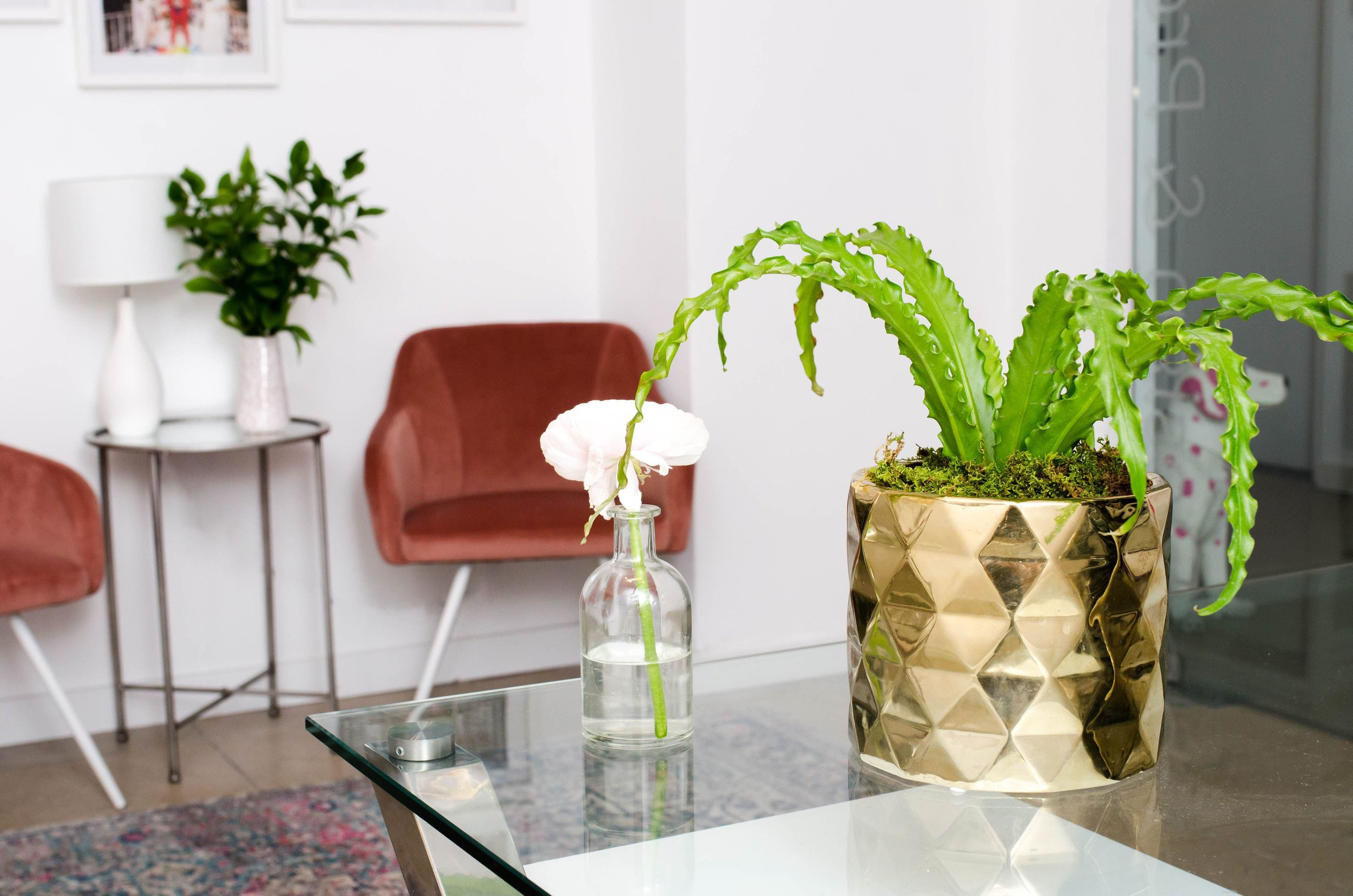 NEW - OFFICE - SPACE - MANHATTAN - COOL - OPEN - RECEPTION - PLANTS - B FLORAL