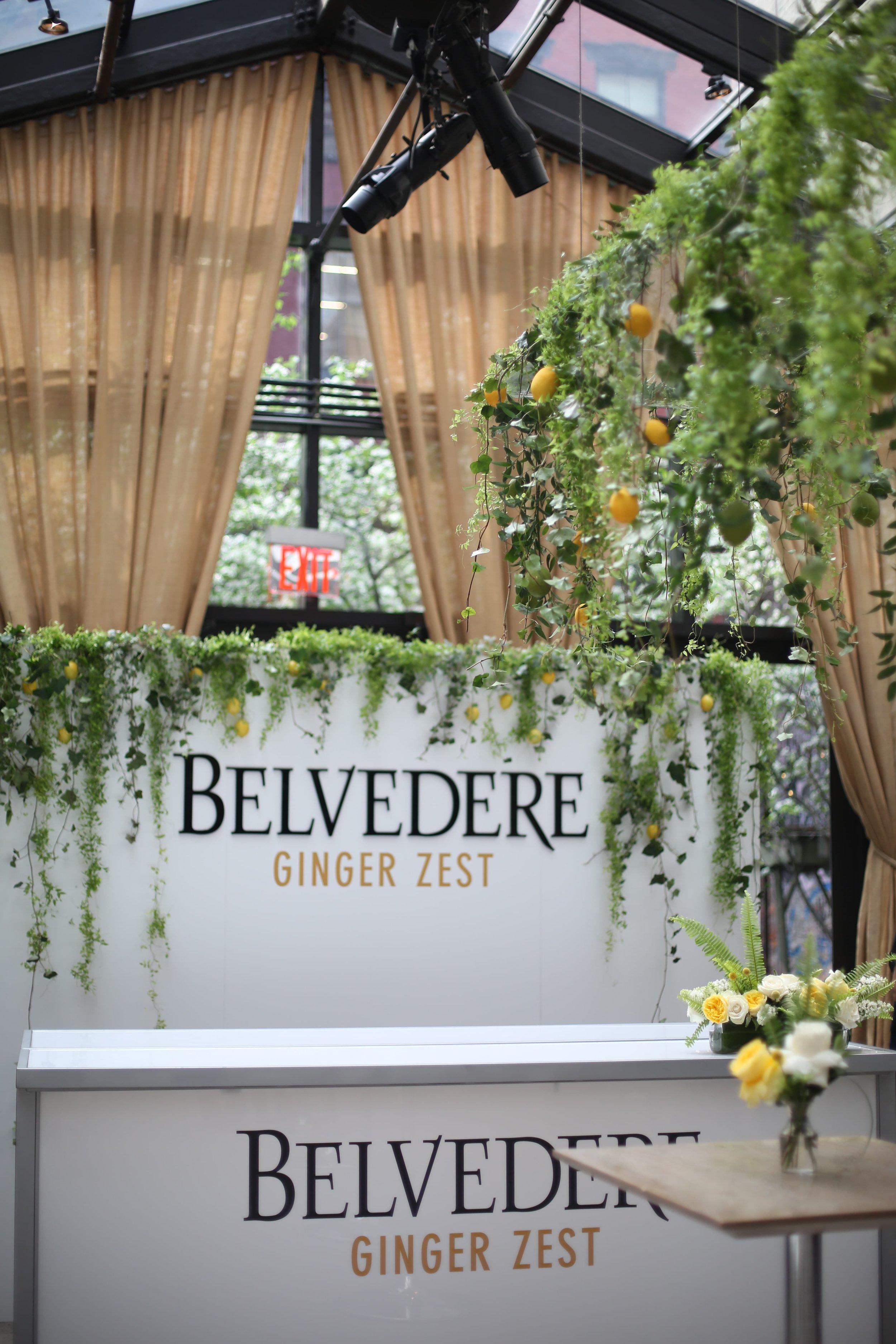 Belvedere Vodka Hanging Installation