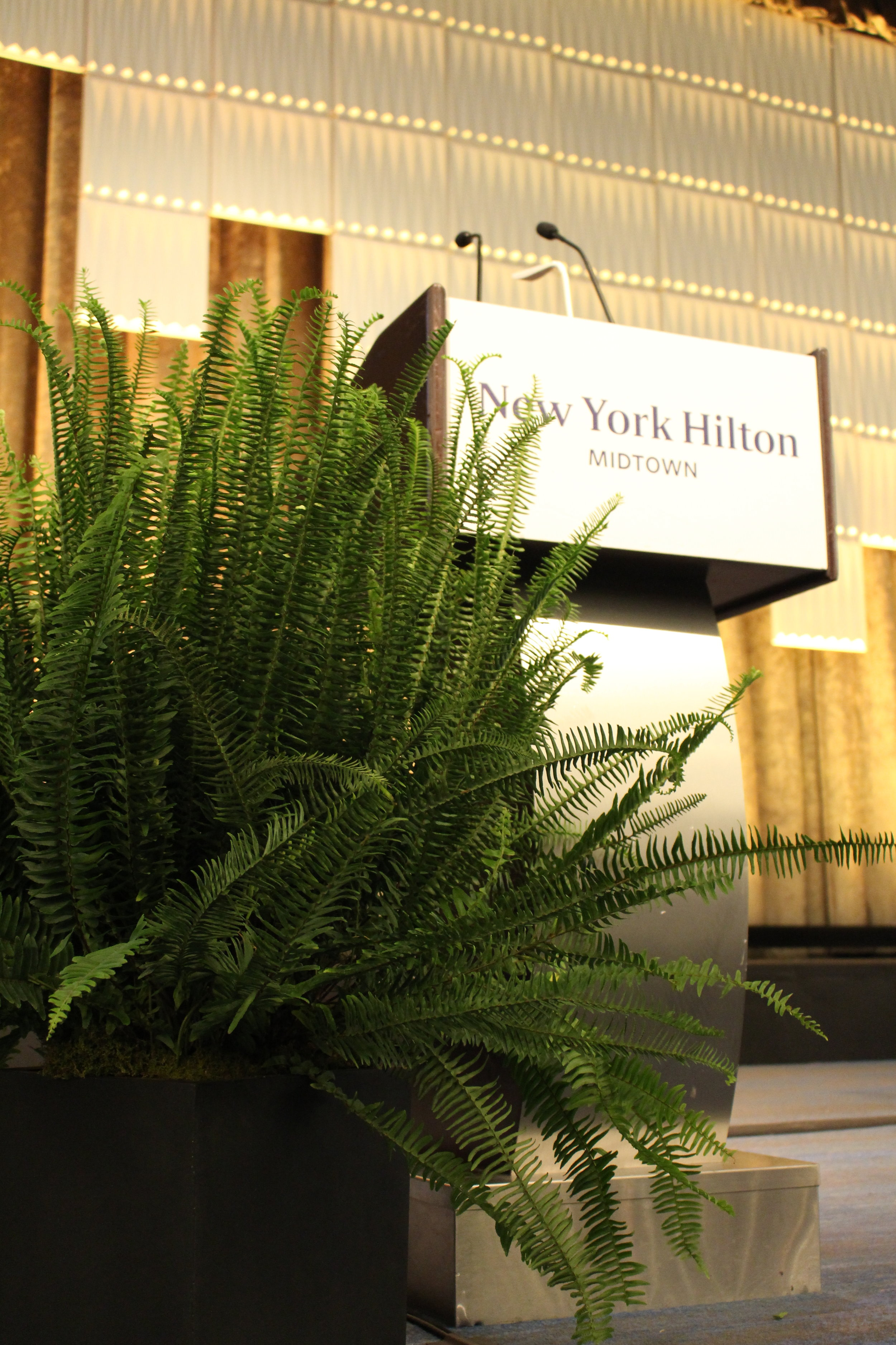 STAGE DESIGN - HILTON - PLANT