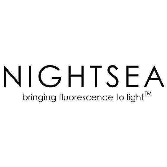 NightSea.jpg