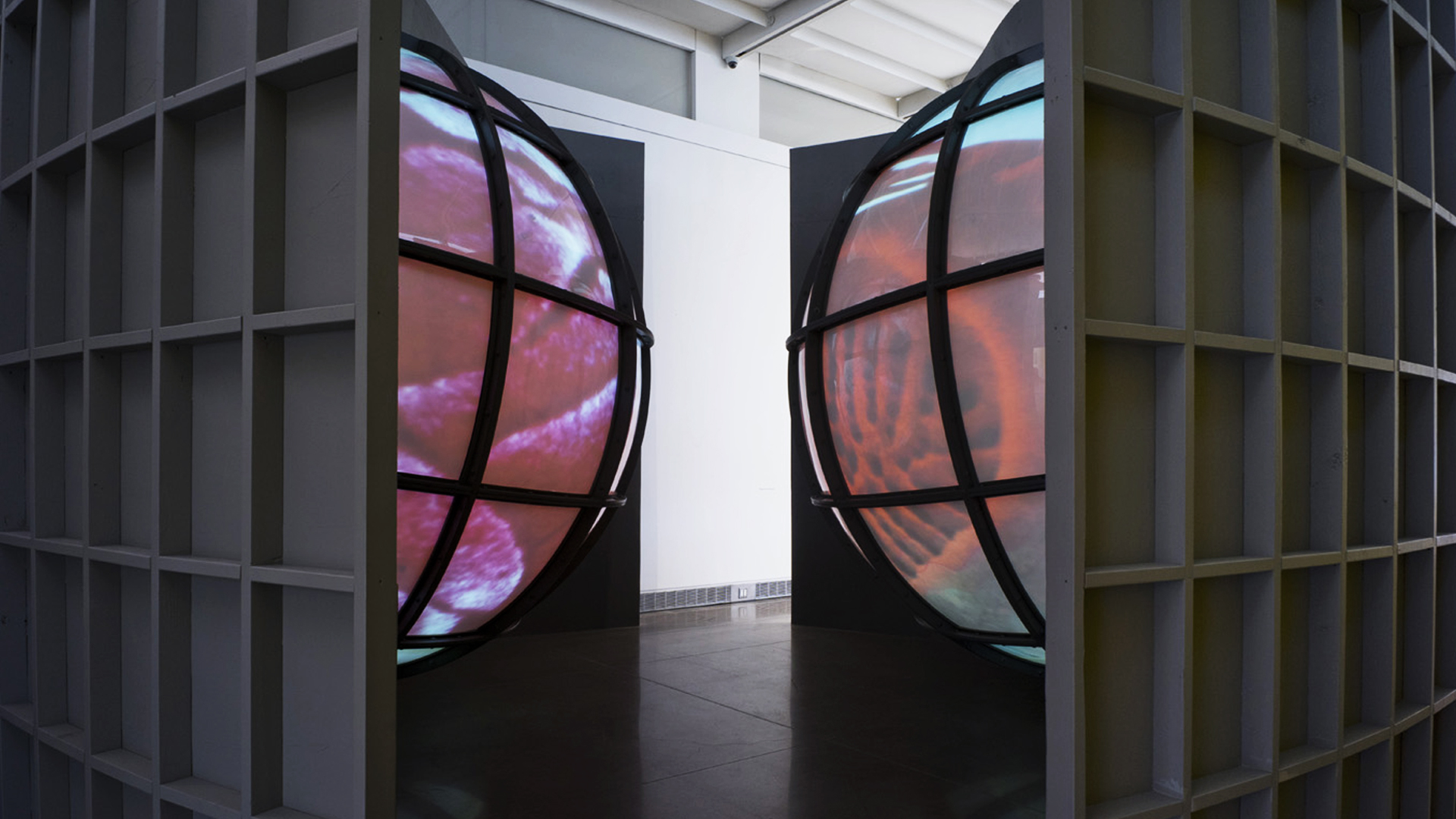 Mel Chin, installation view Queens Museum 2018