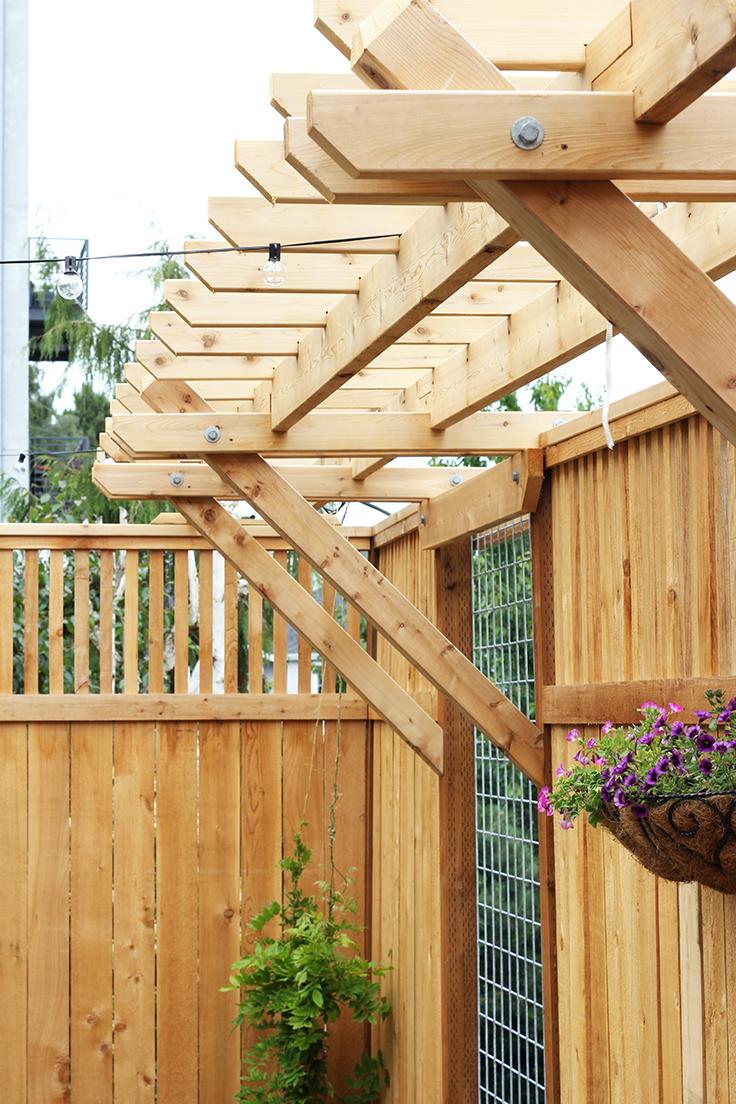 The-Grit-and-Polish-Dexter-Backyard-fence.jpg