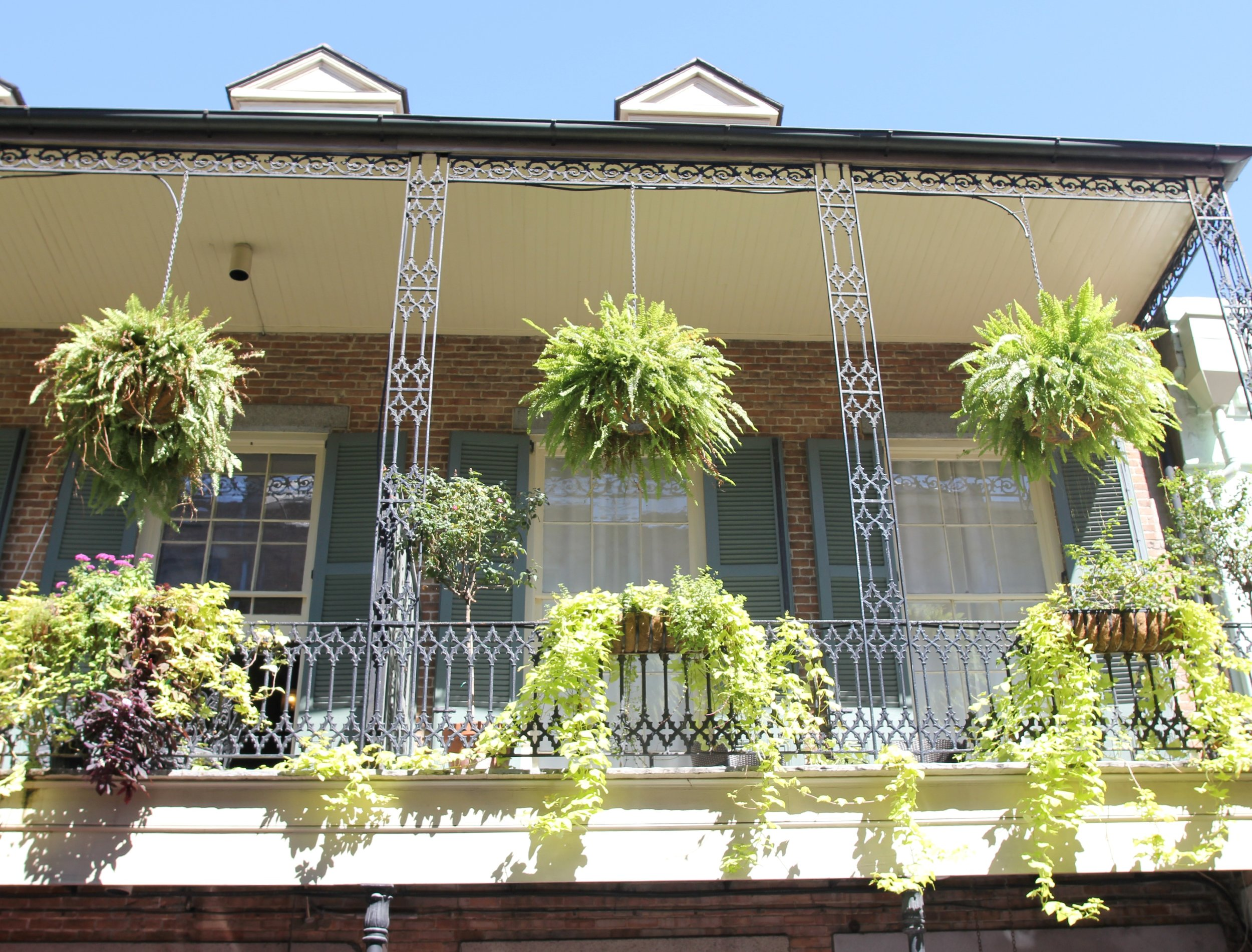 The-Grit-and-Polish-New-Orleans-French-Quarter.jpg
