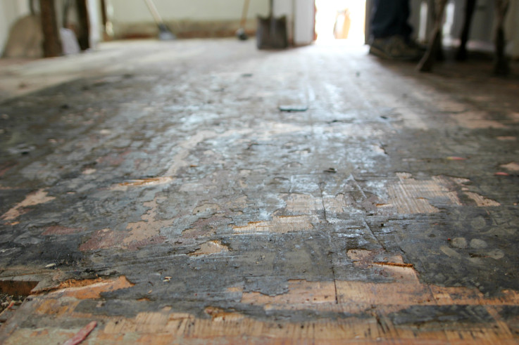 The Grit and Polish - Kitchen Demo Floors