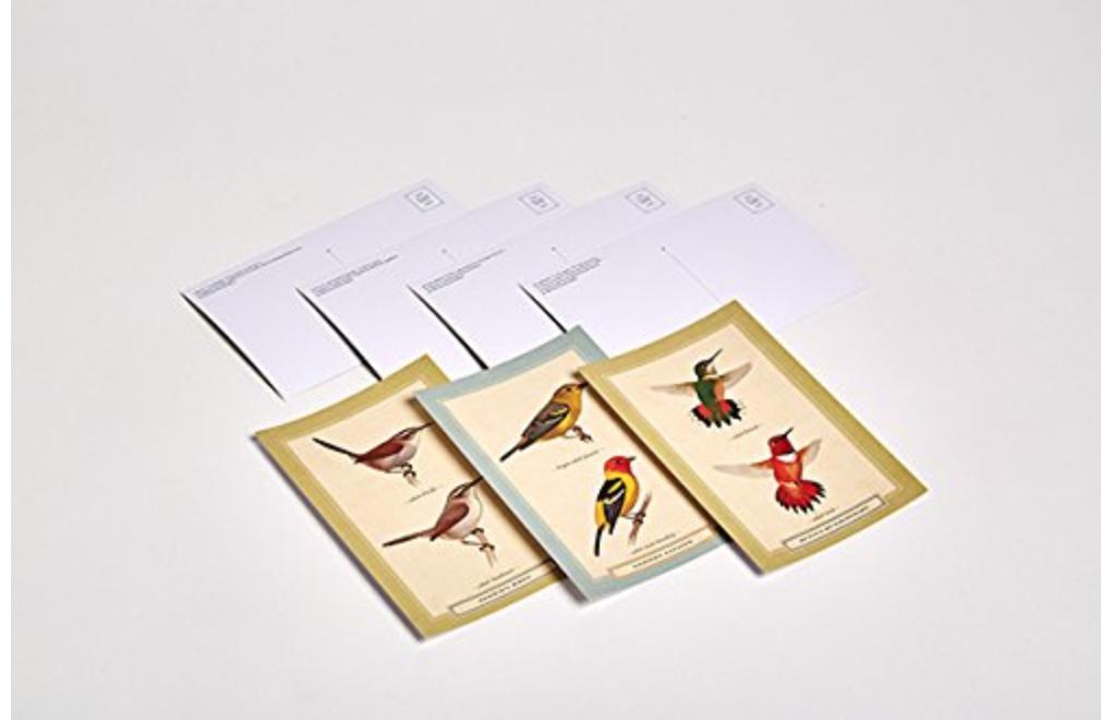 Bird Postcards