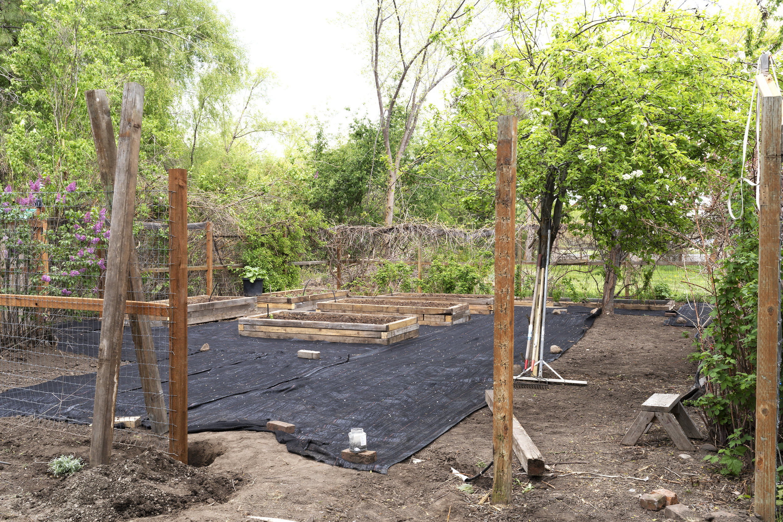 The Grit and Polish - Farmhouse Garden in progress weed barrier.jpg