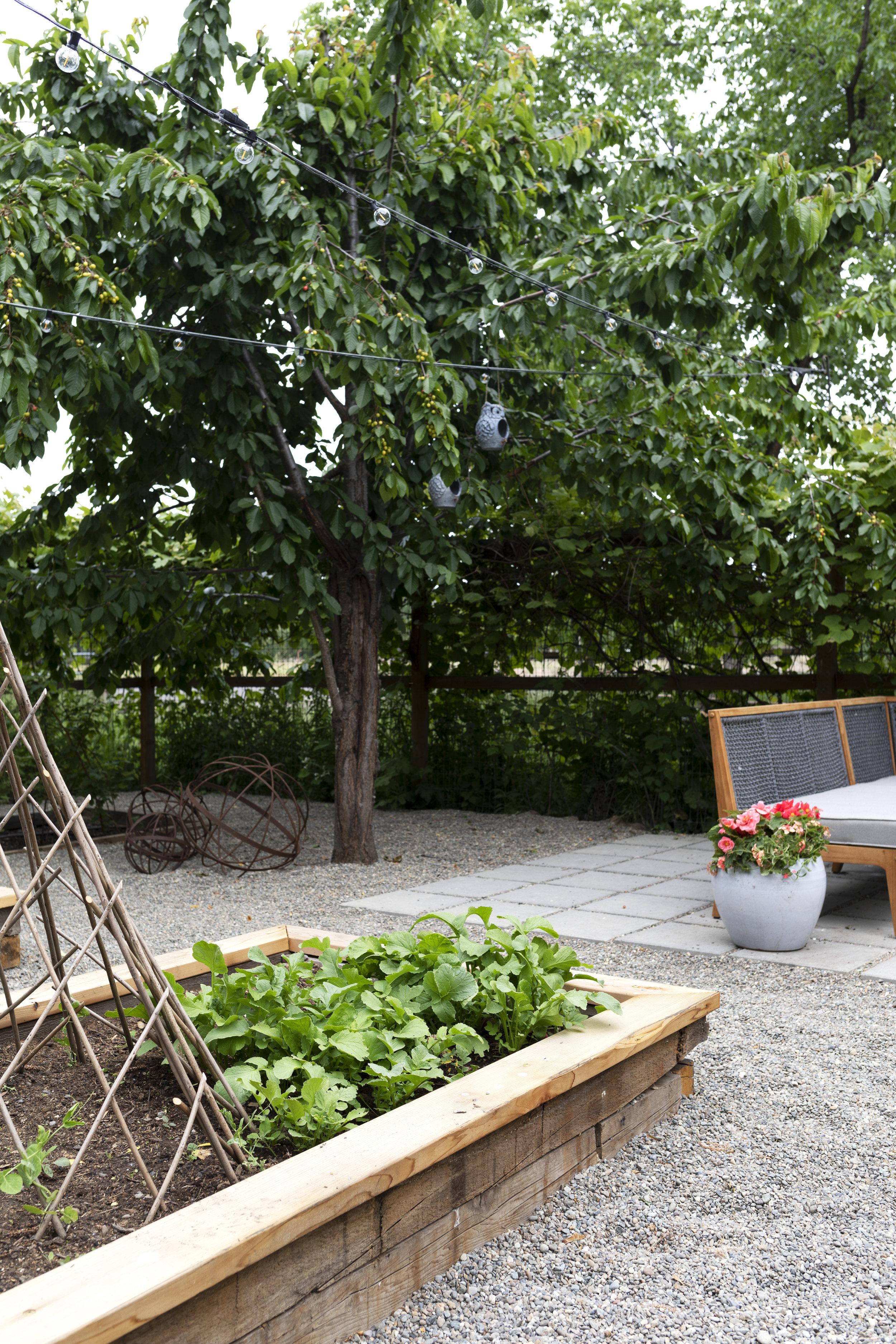 The Grit and Polish - Farmhouse Garden Raised Beds 6.jpg