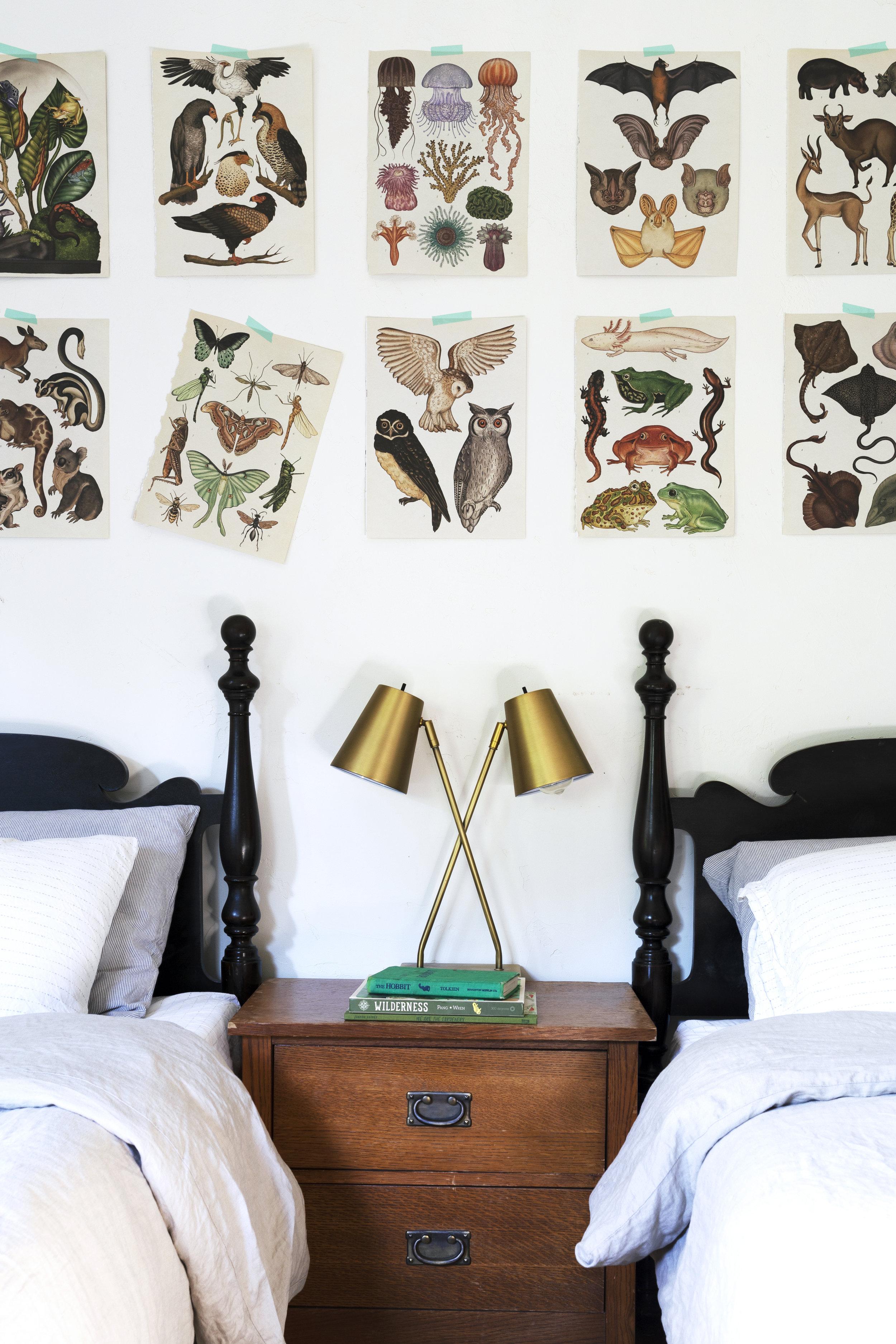 The Grit and Polish - Farmhouse Boys Bedroom Animalium Art 8.jpg