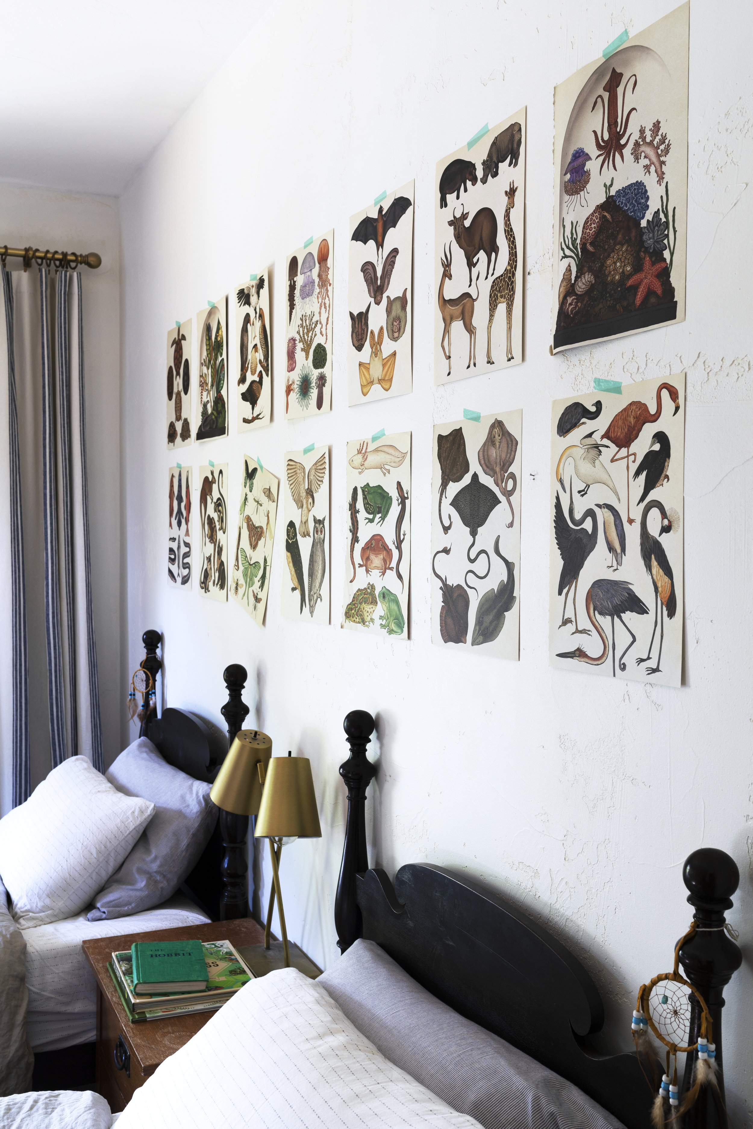 The Grit and Polish - Farmhouse Boys Bedroom Animalium Art 19.jpg