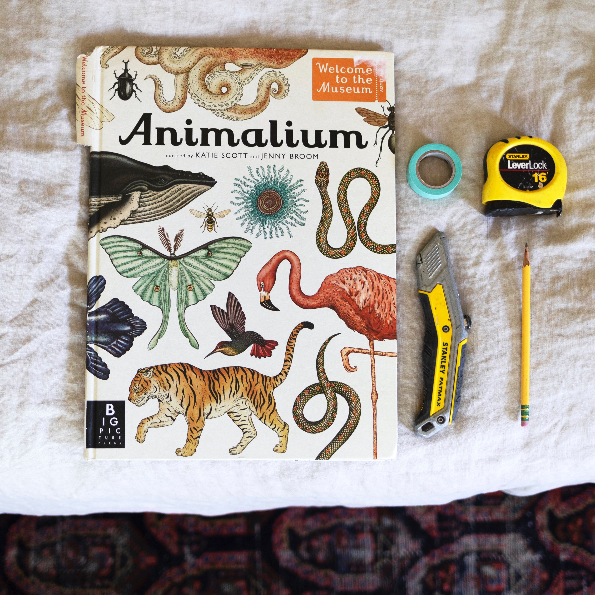 The+Grit+and+Polish+-+Farmhouse+Boys+Bedroom+Animalium+Art+21.jpg