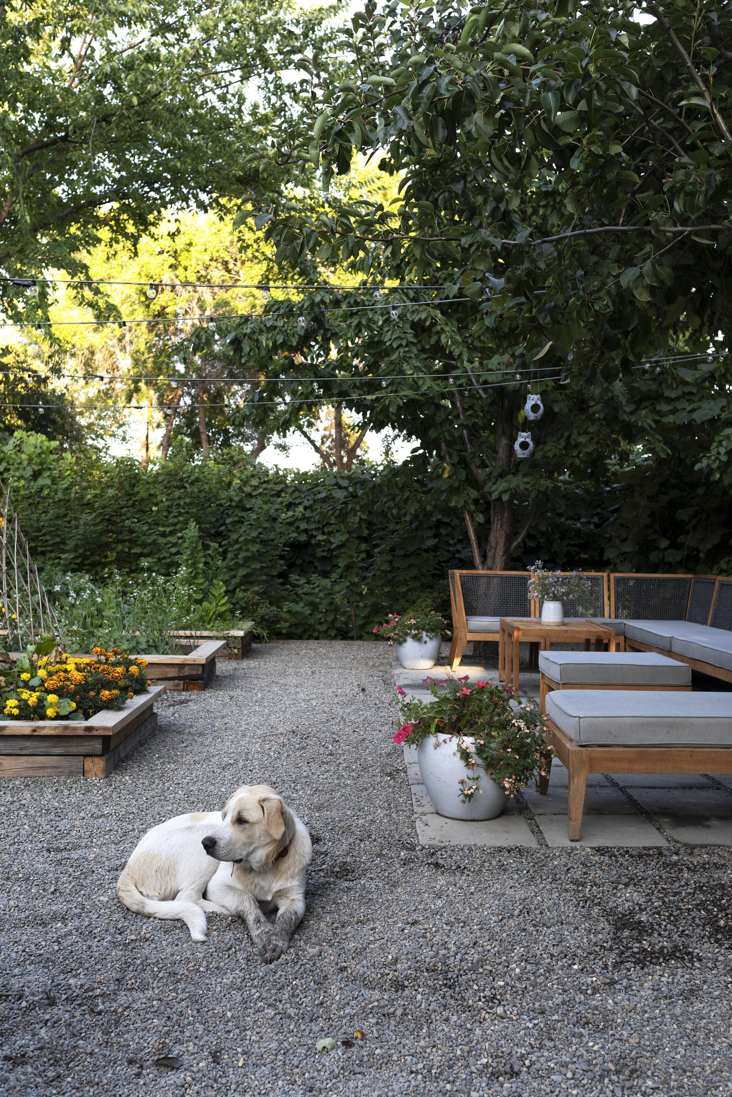 The Grit and Polish - Farmhouse Garden Gibbs.jpg