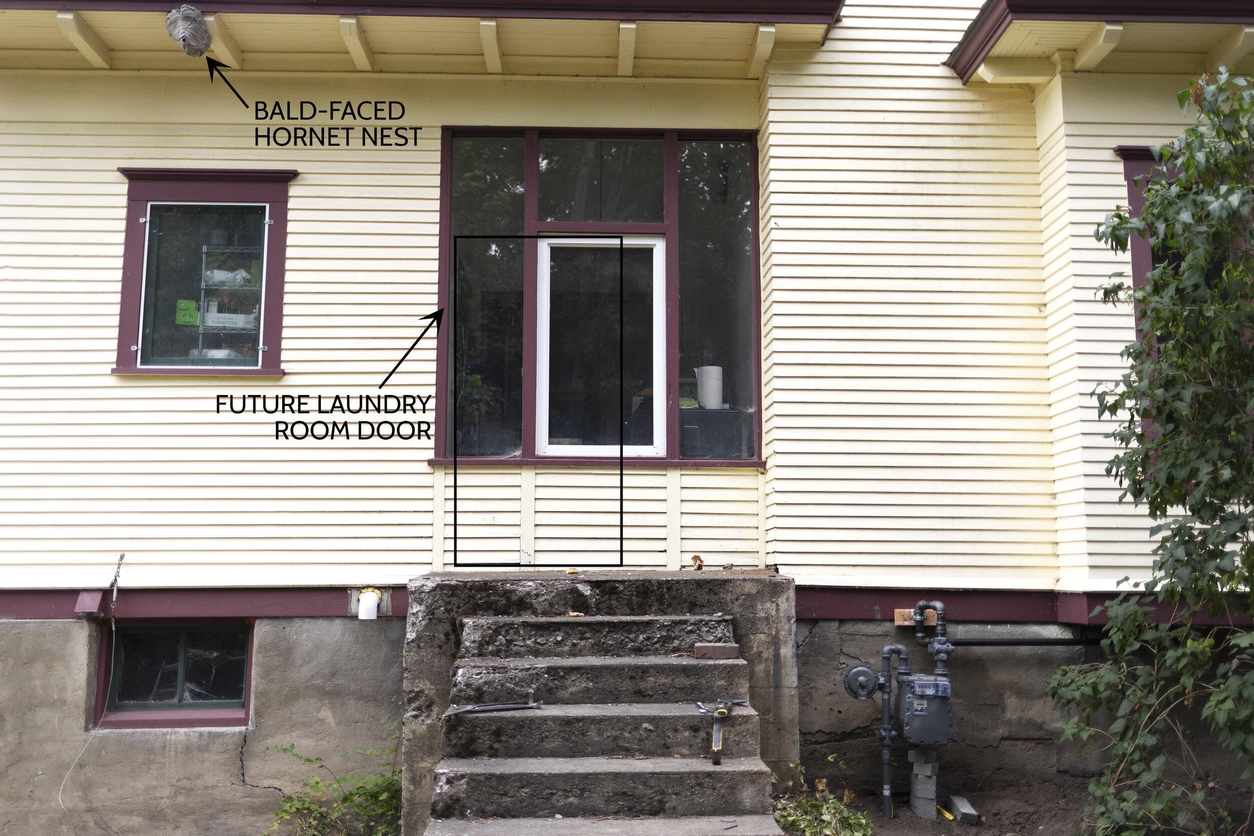 The Grit and Polish - Farmhouse Laundry Room Bald Faced Hornets.jpg
