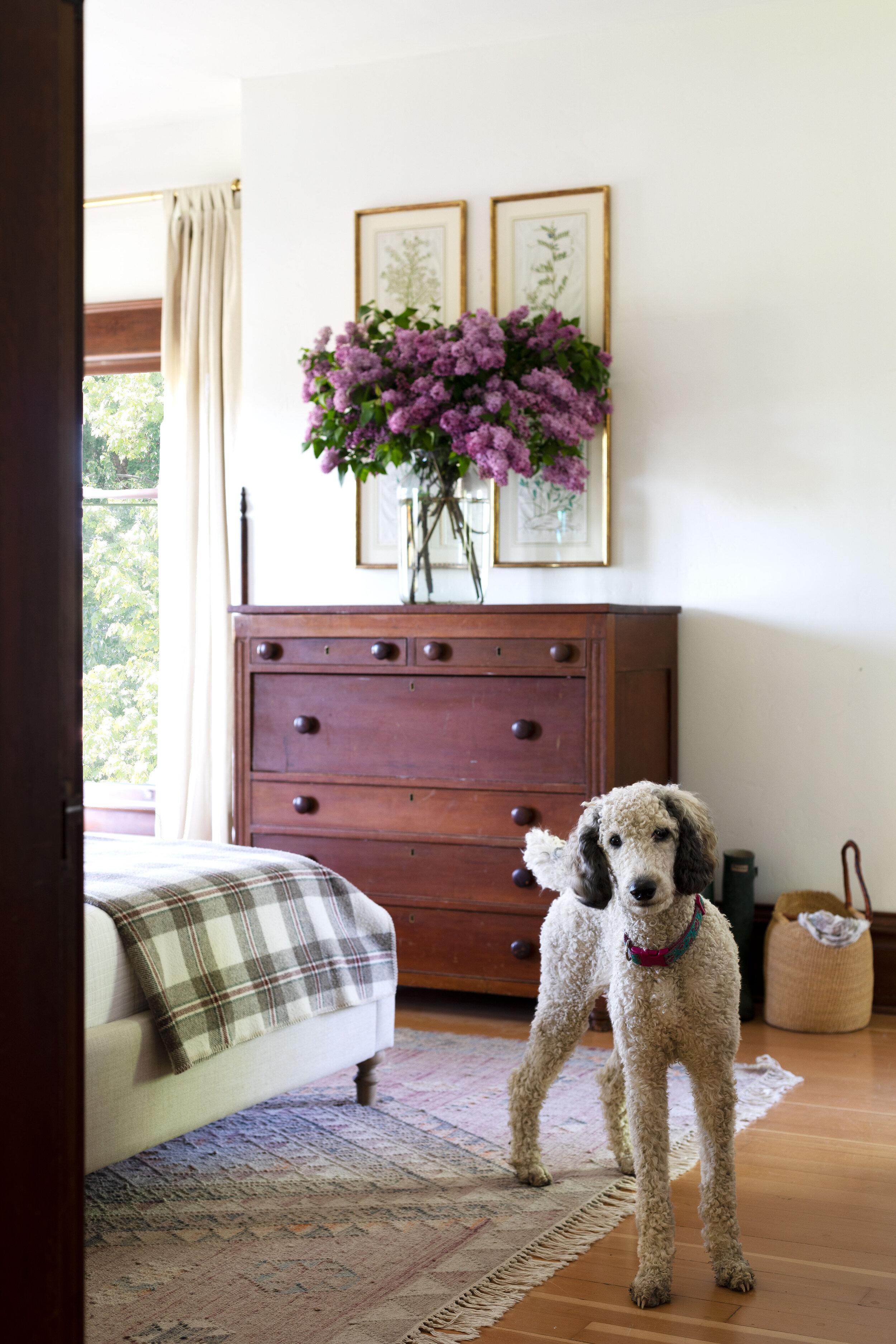 The-Grit-and-Polish---Farmhouse-Bedroom-Lilac-Arrangement-10.jpg