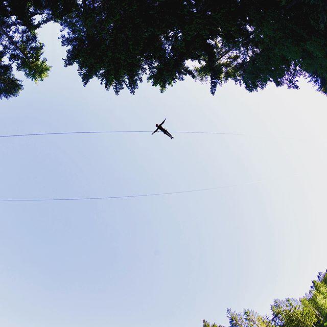 Högt där uppe #zipline #kungsbygget