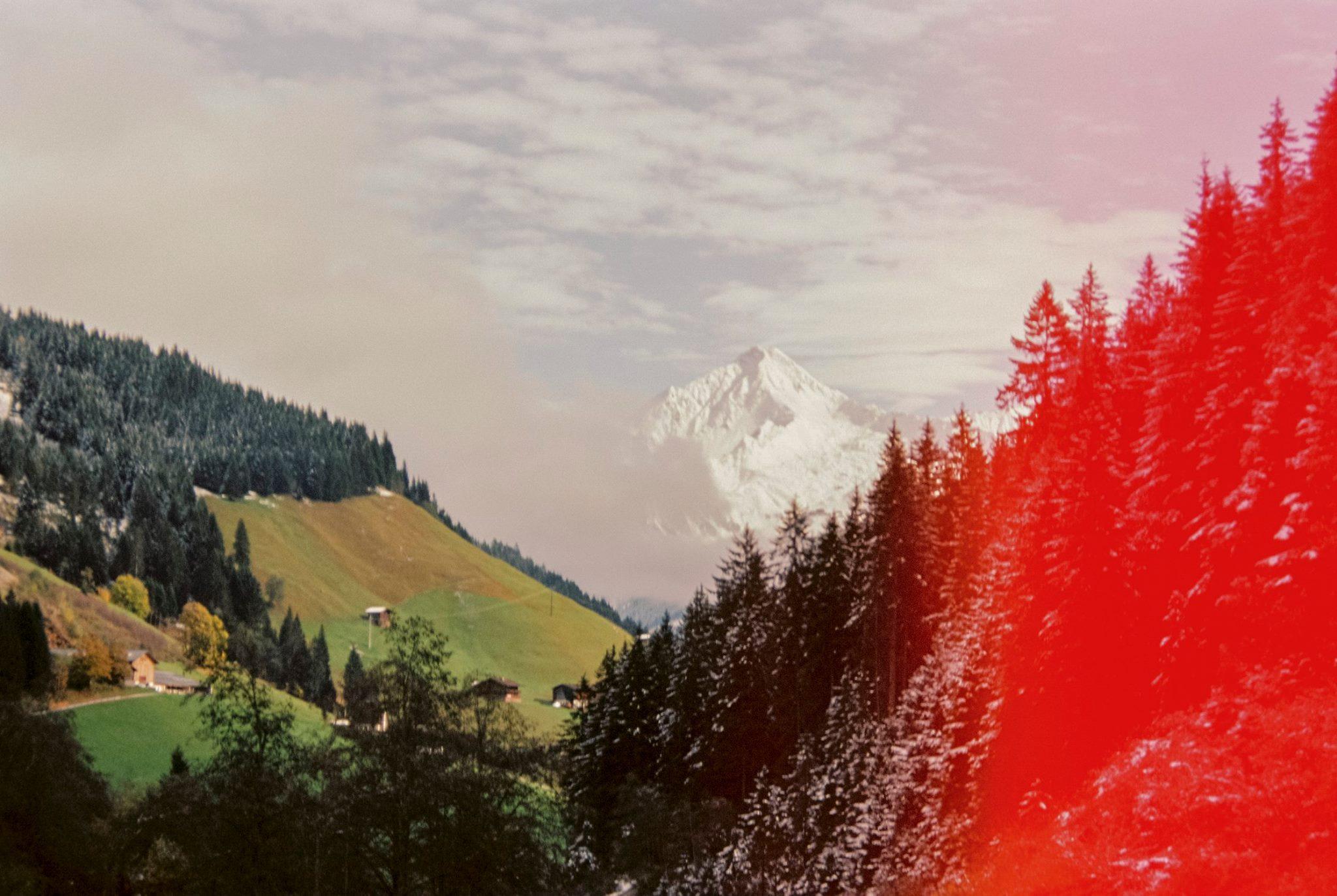 liwa_austria_3.jpg