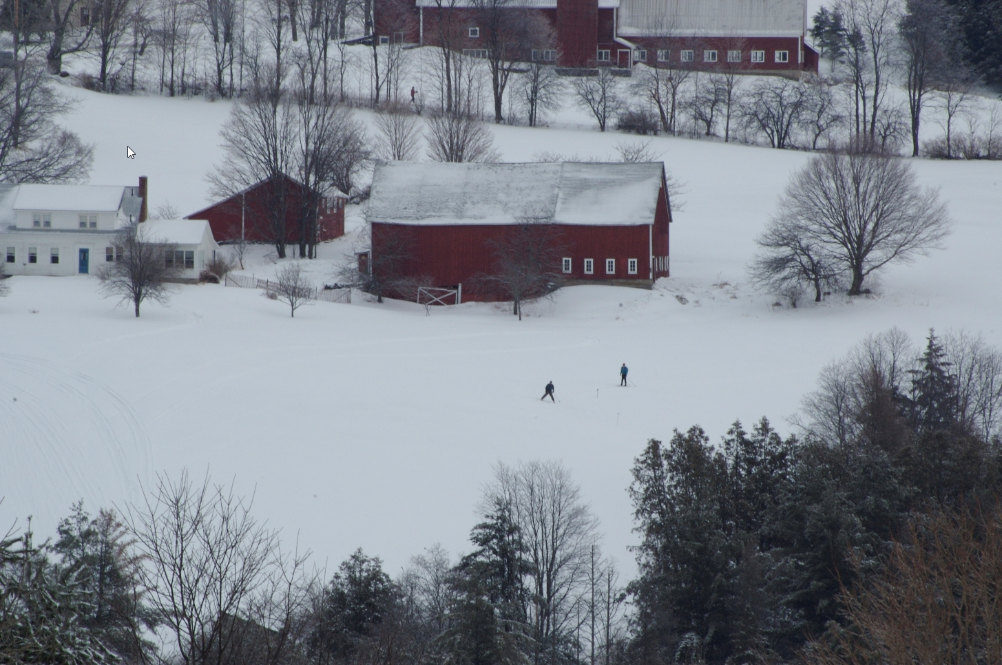 A Craftsbury Farm by Steve Wright