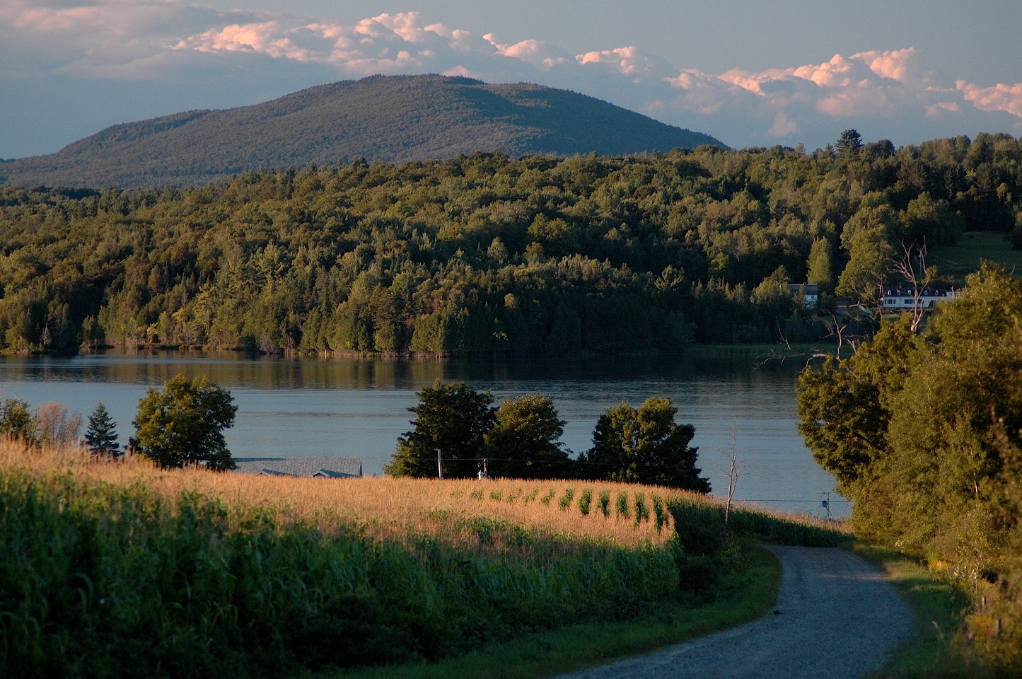 Crops, Water, Forest, Mountain  by Steve Wright