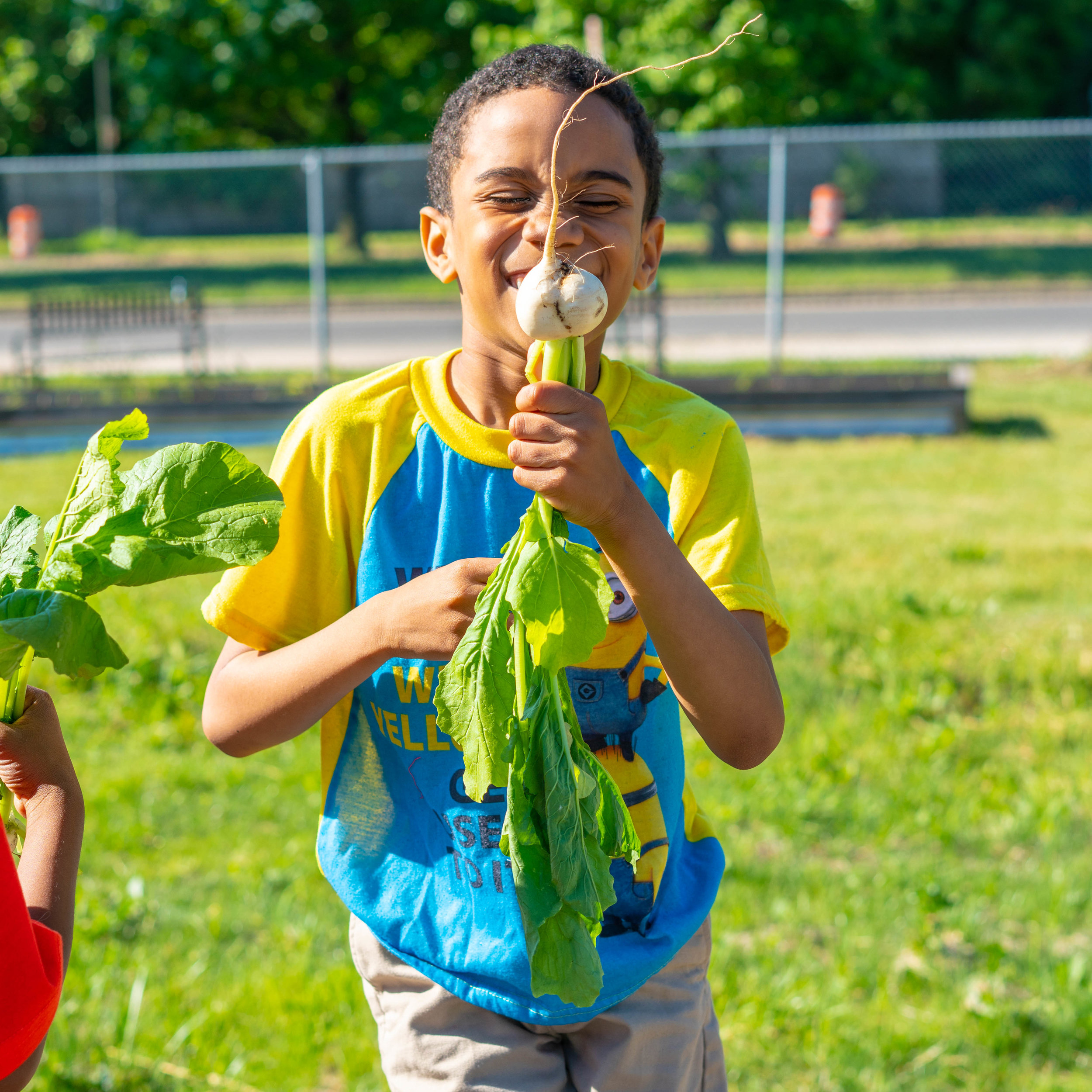 About Big Green - Founded in 2011 by Kimbal Musk and Hugo Matheson, Big Green is national nonprofit building a healthier future for kids by introducing them to real food through a nationwide network of Learning Gardens and food literacy programs.Learn more ➝