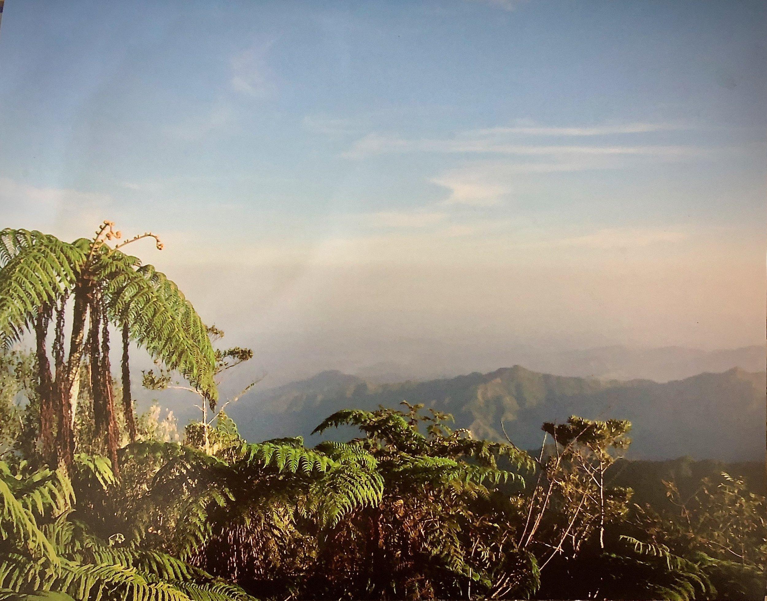 Figure 4:  Amanecer en El Pico Turquino,  reference image 1