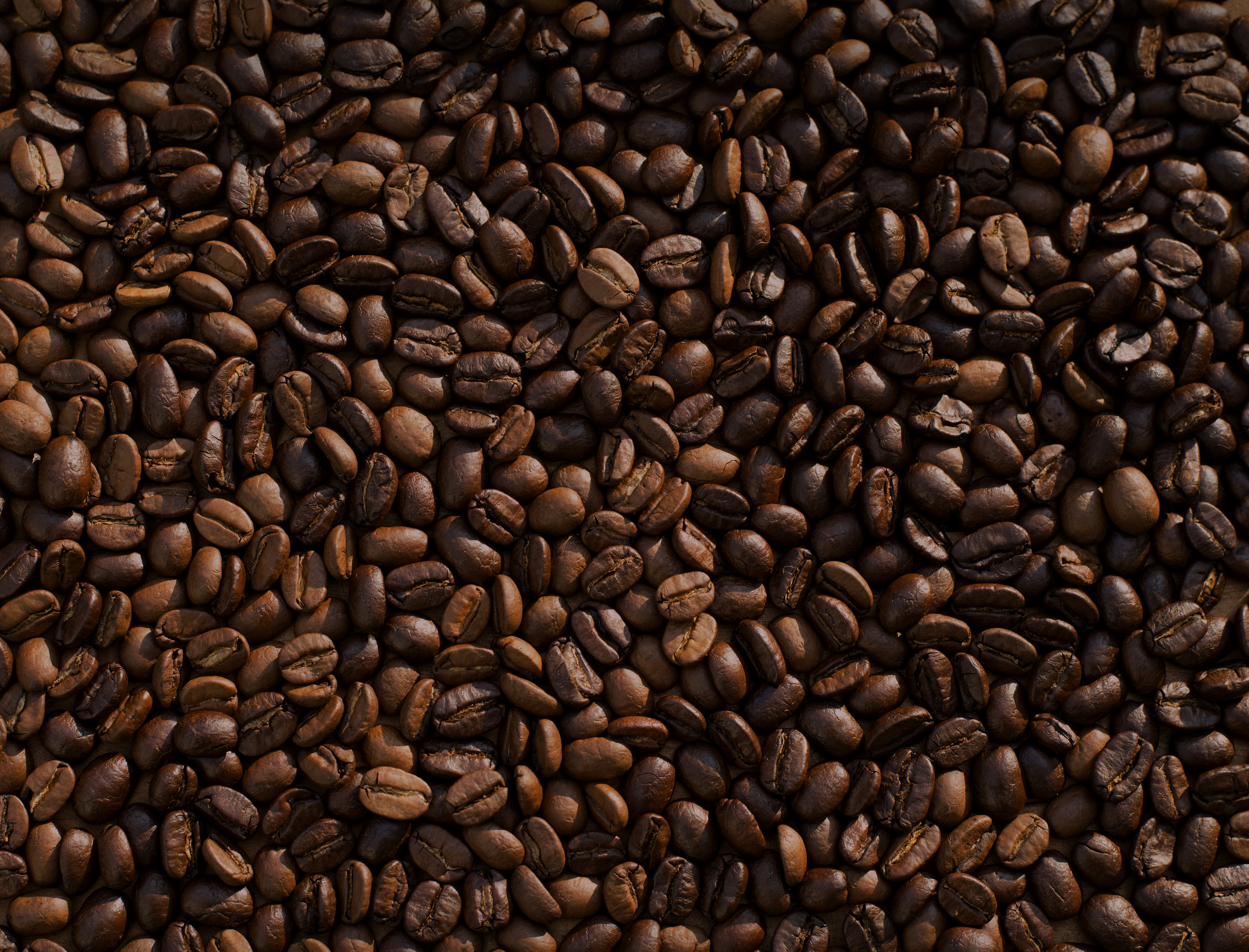 """""""Coffee: The favorite drink of the civilized world."""" - ~ Thomas Jefferson"""